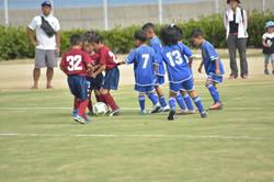 mini_soccer (571)