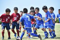 mini_soccer (518)