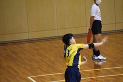 バレーボール (181)