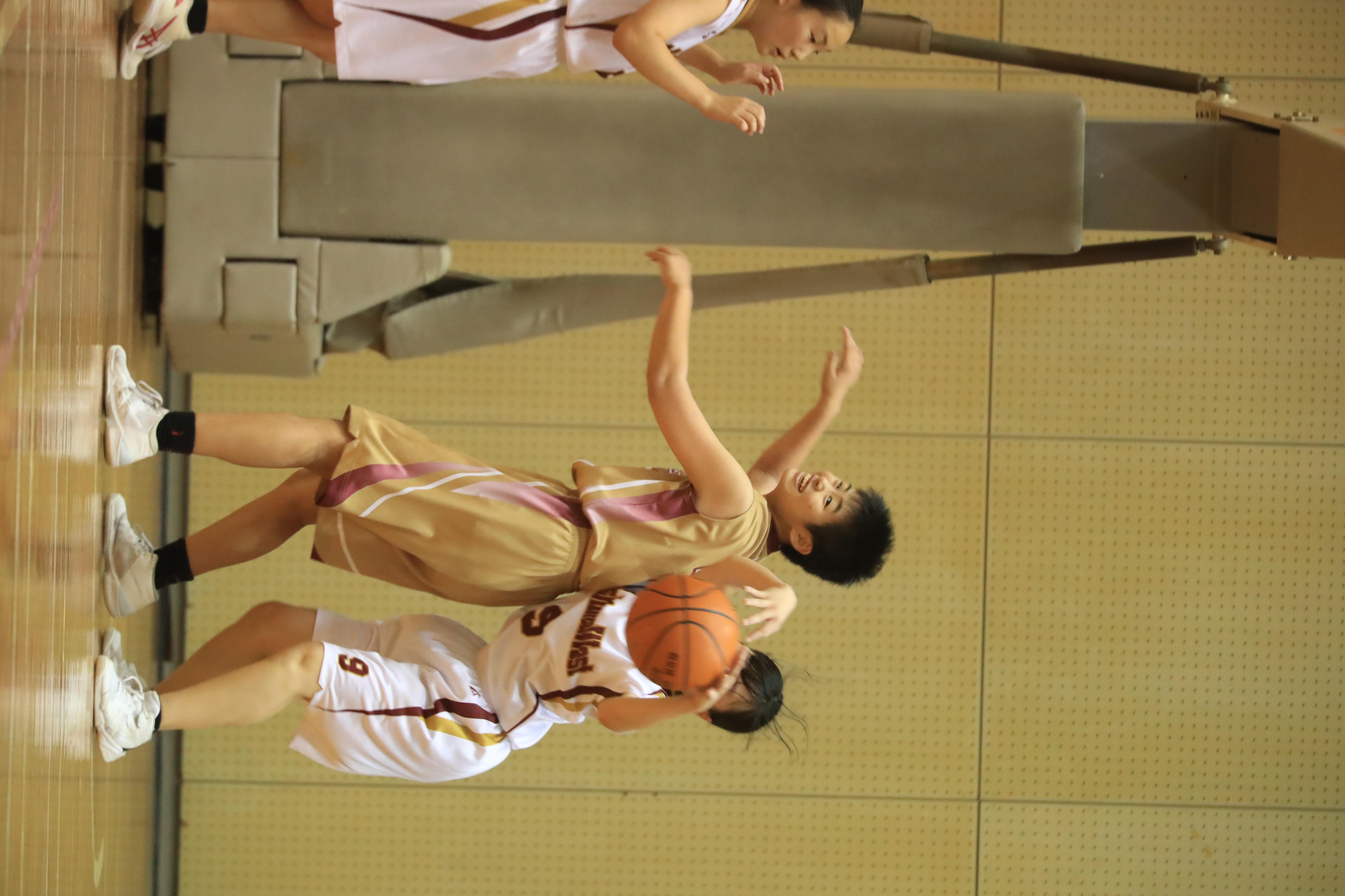 バスケット (427)