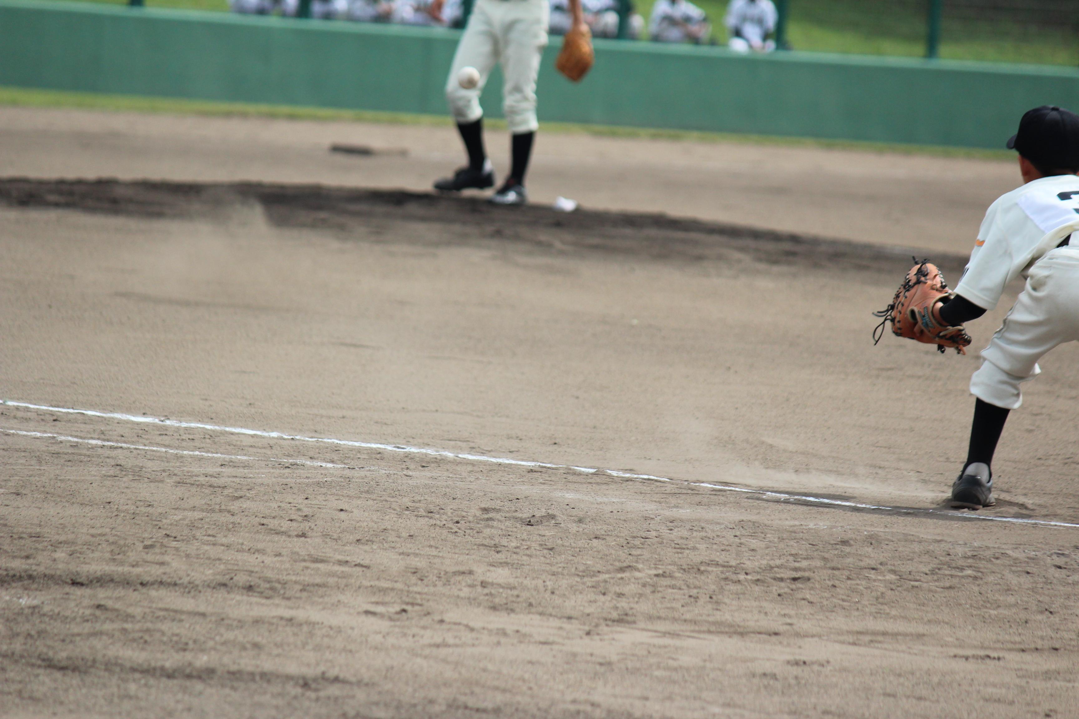 野球 (559)
