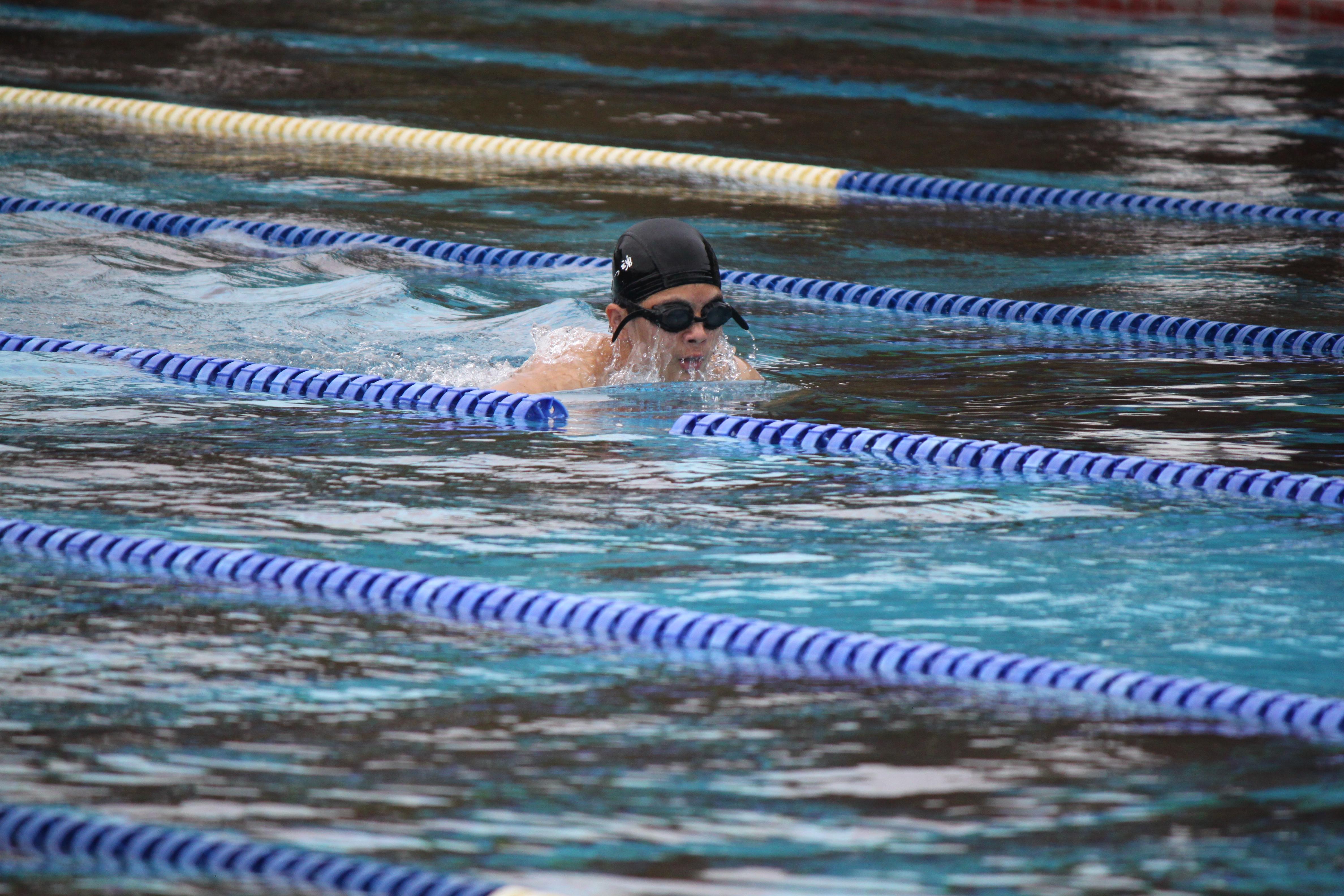 水泳競技 (36)