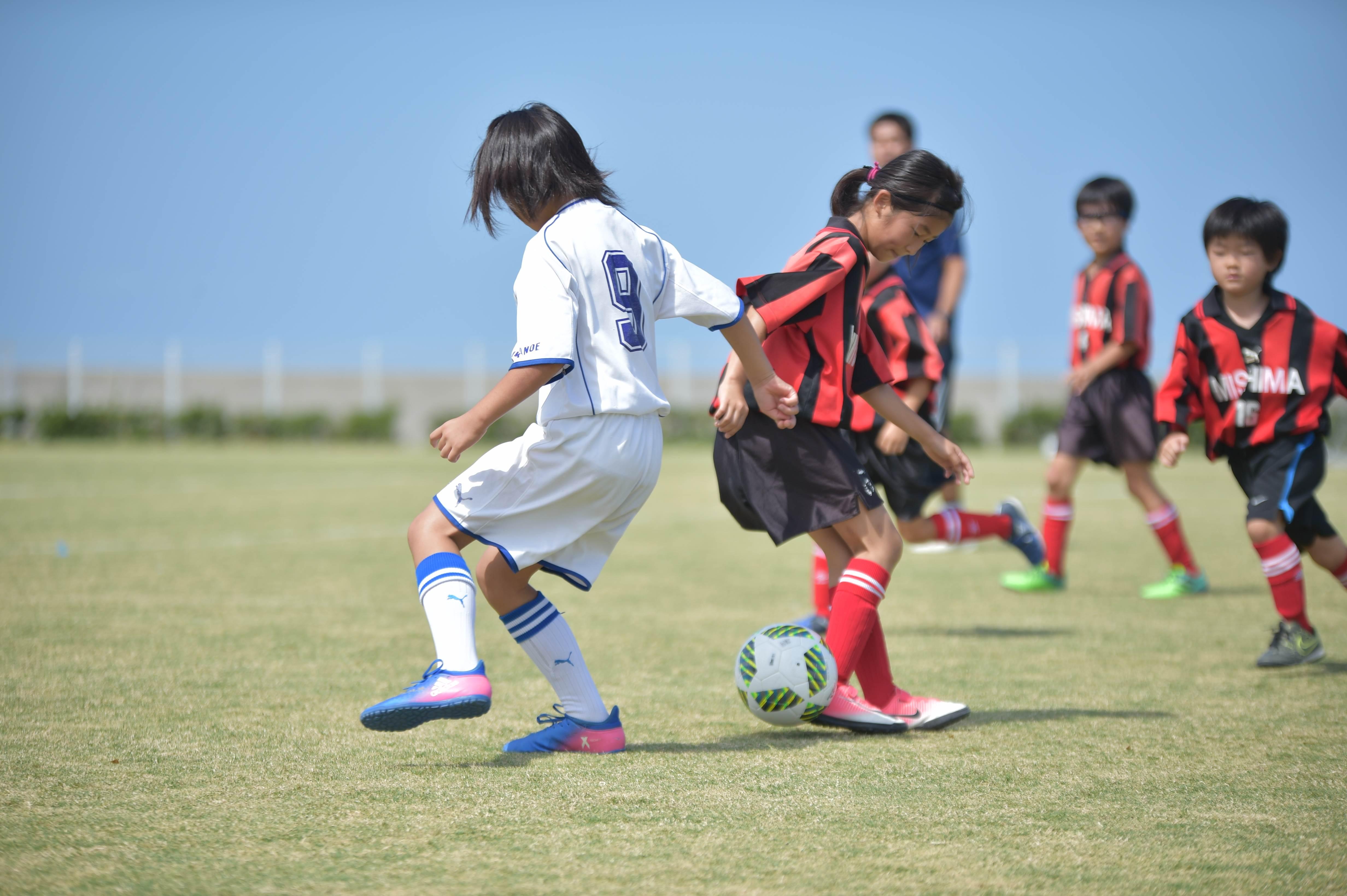 mini_soccer (355)