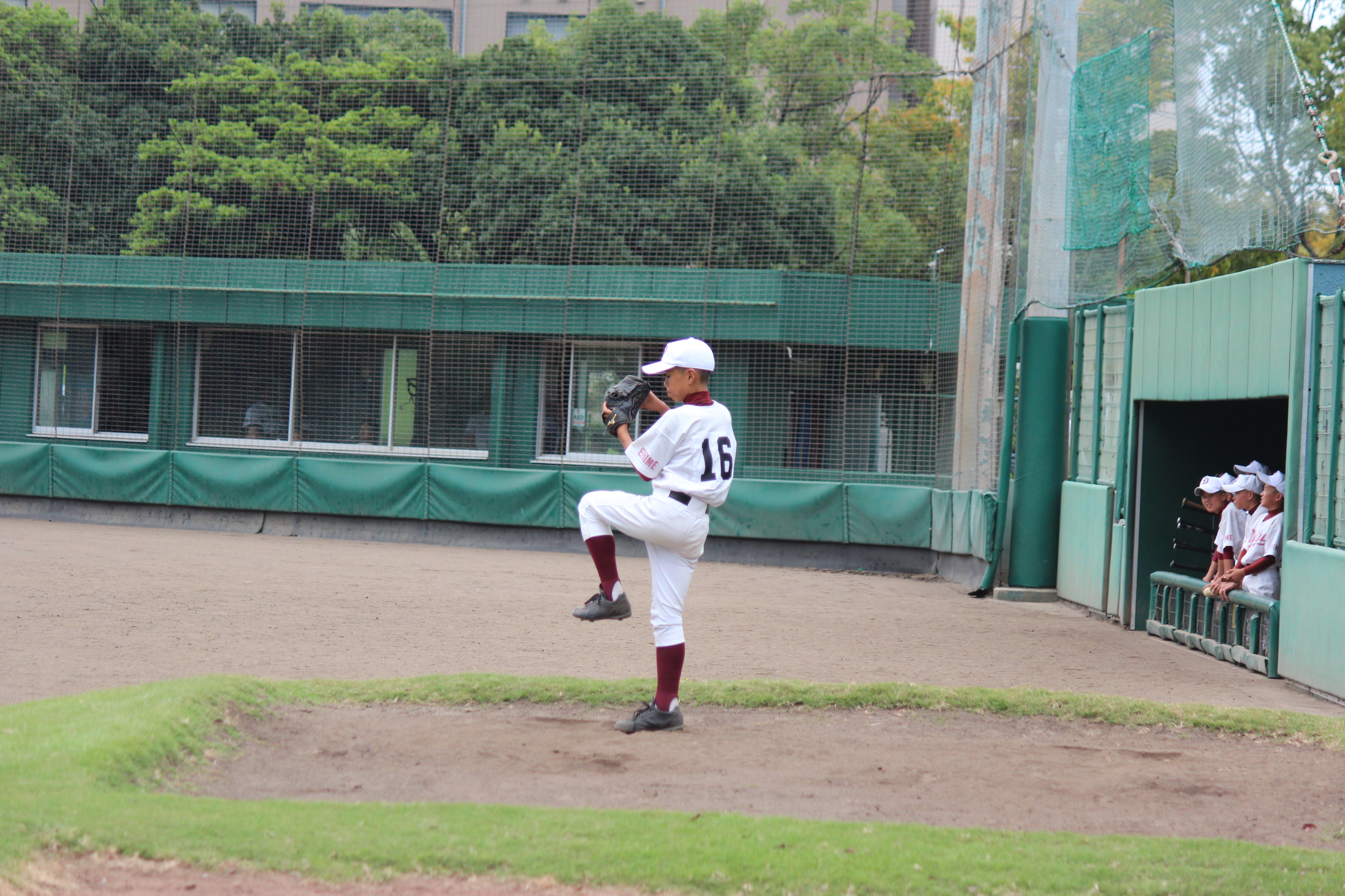 野球 (213)