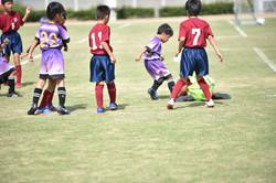 mini_soccer (264)