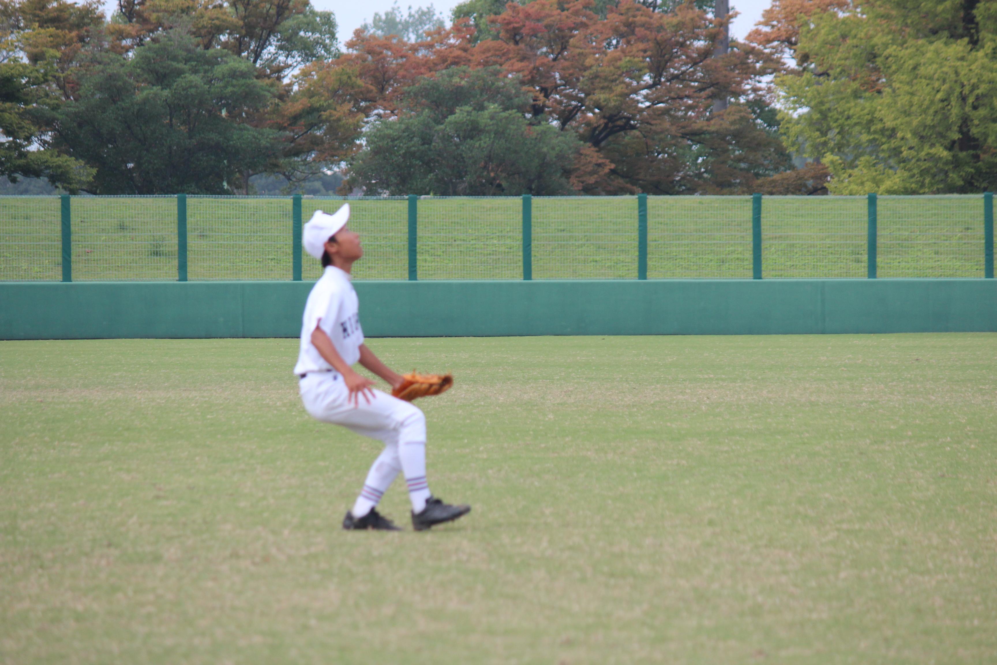野球 (460)