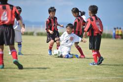 mini_soccer (372)