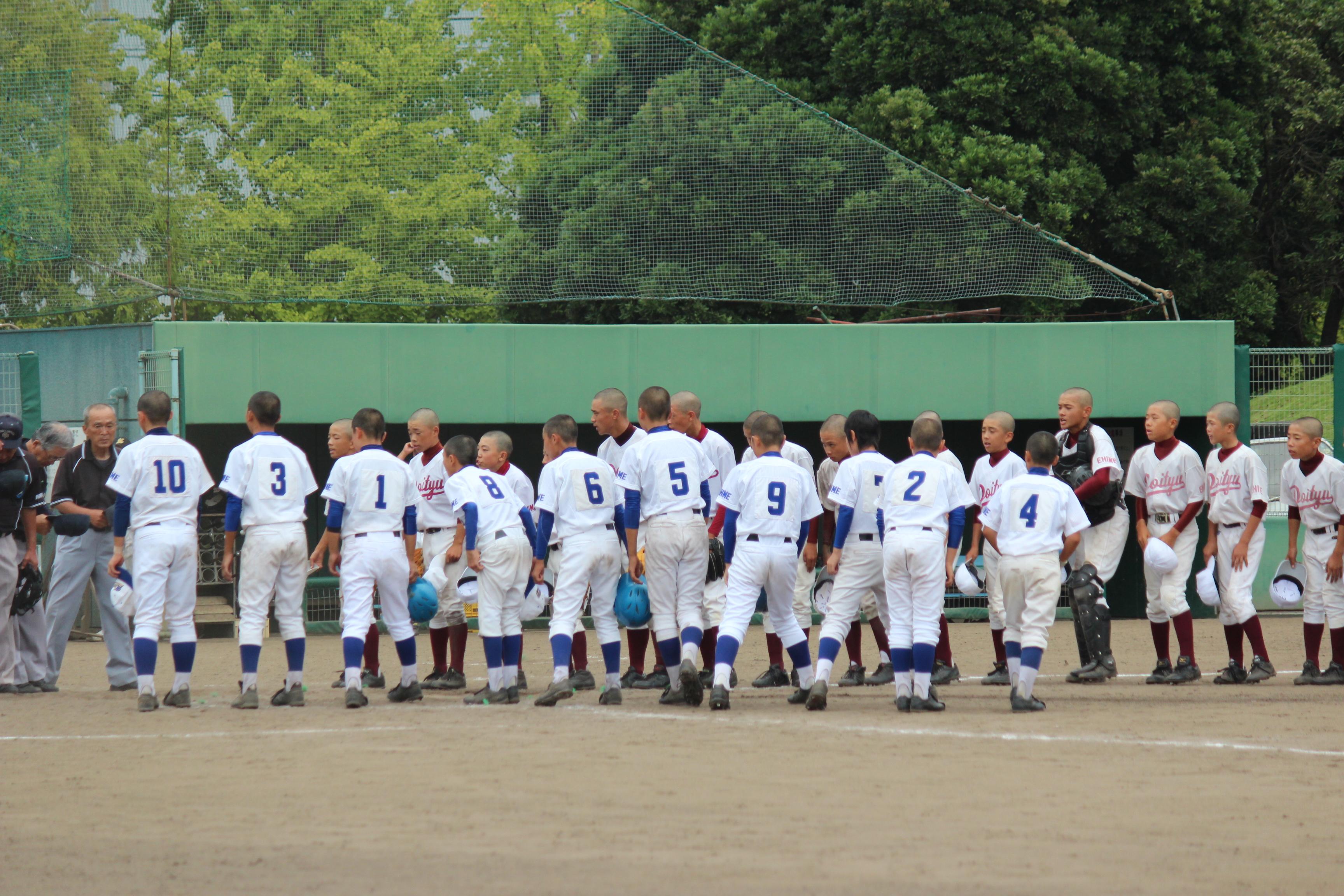 野球 (331)