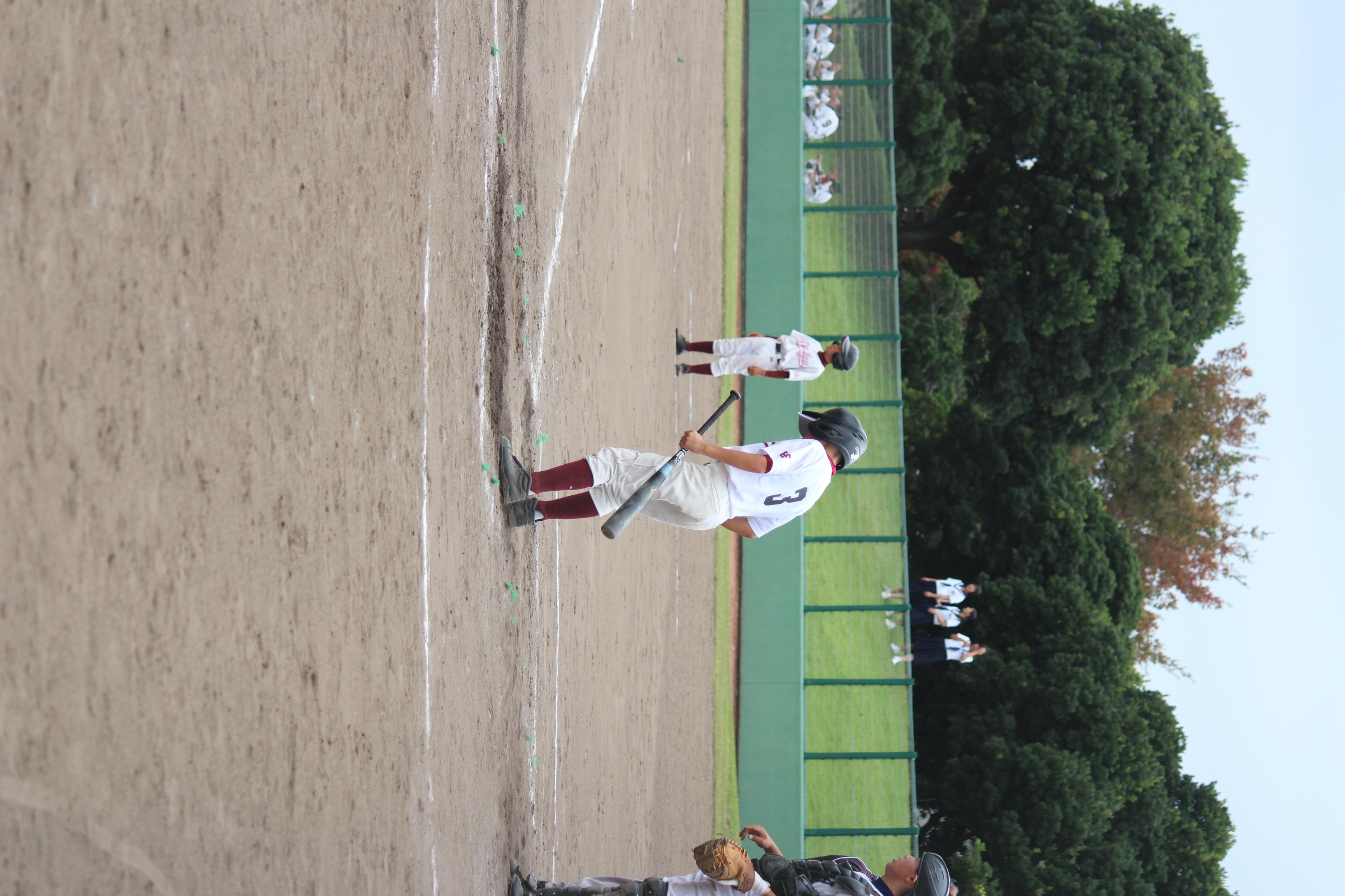 野球 (256)