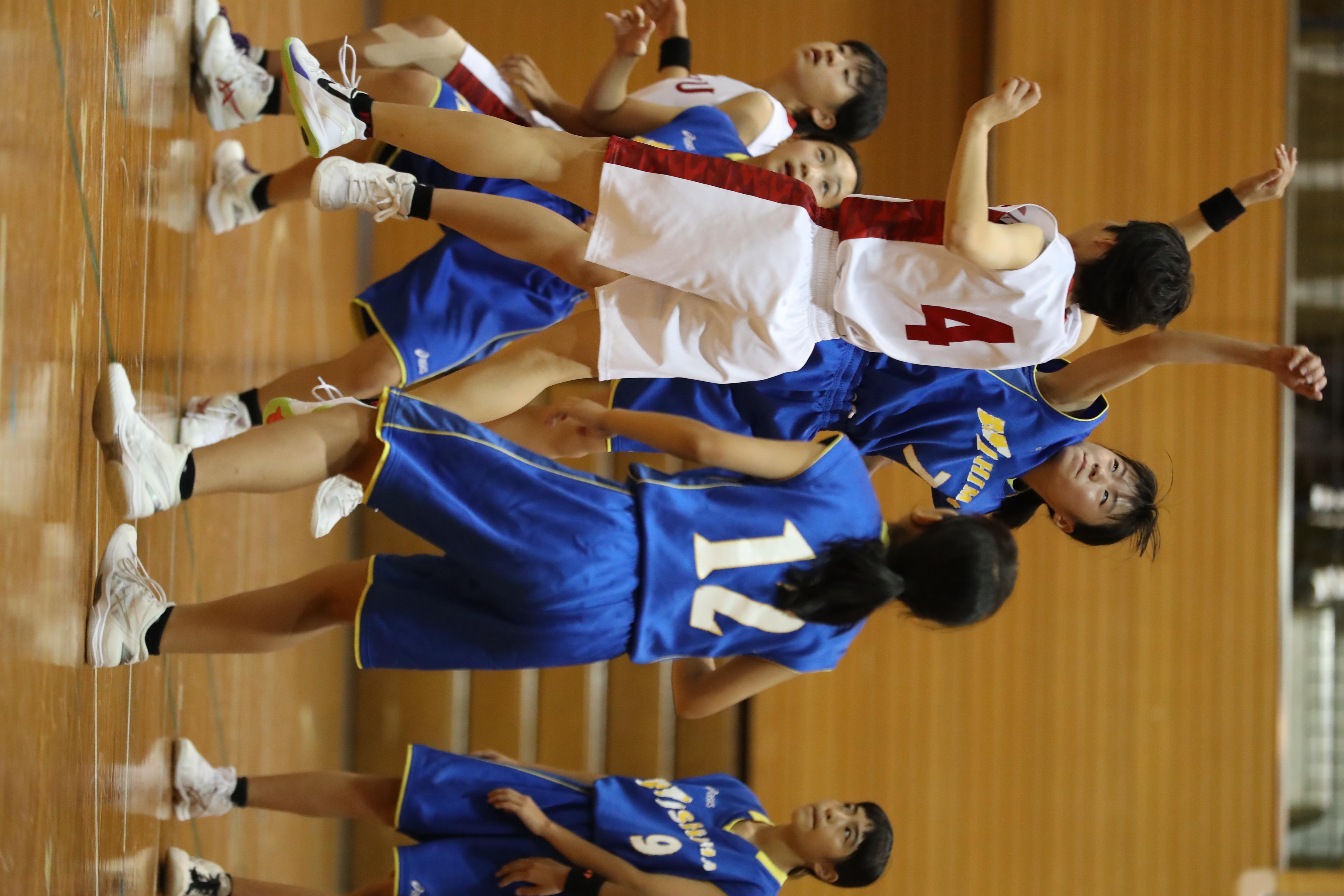 バスケット (340)