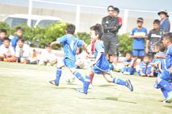 mini_soccer (546)