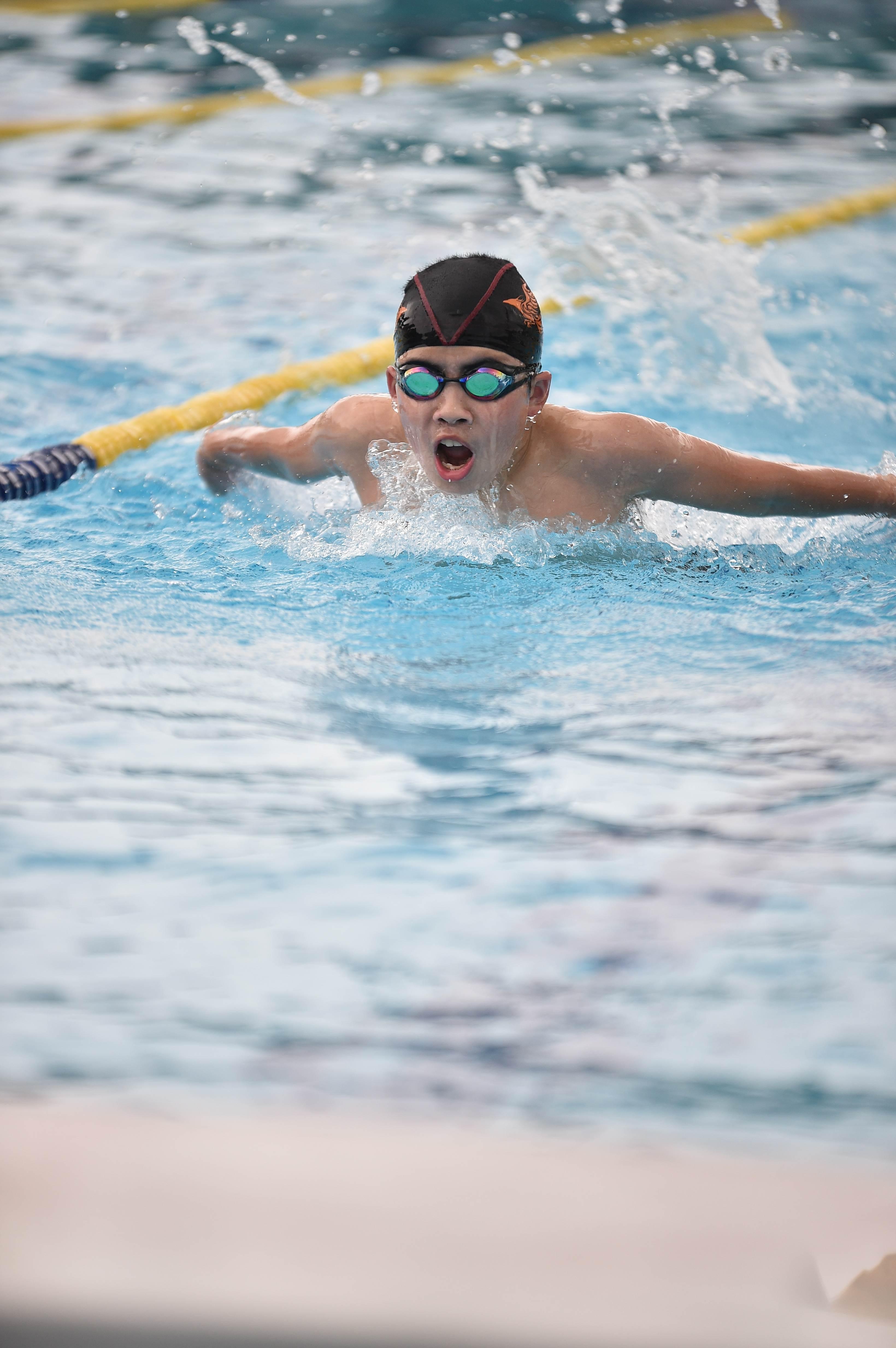 水泳 (90)