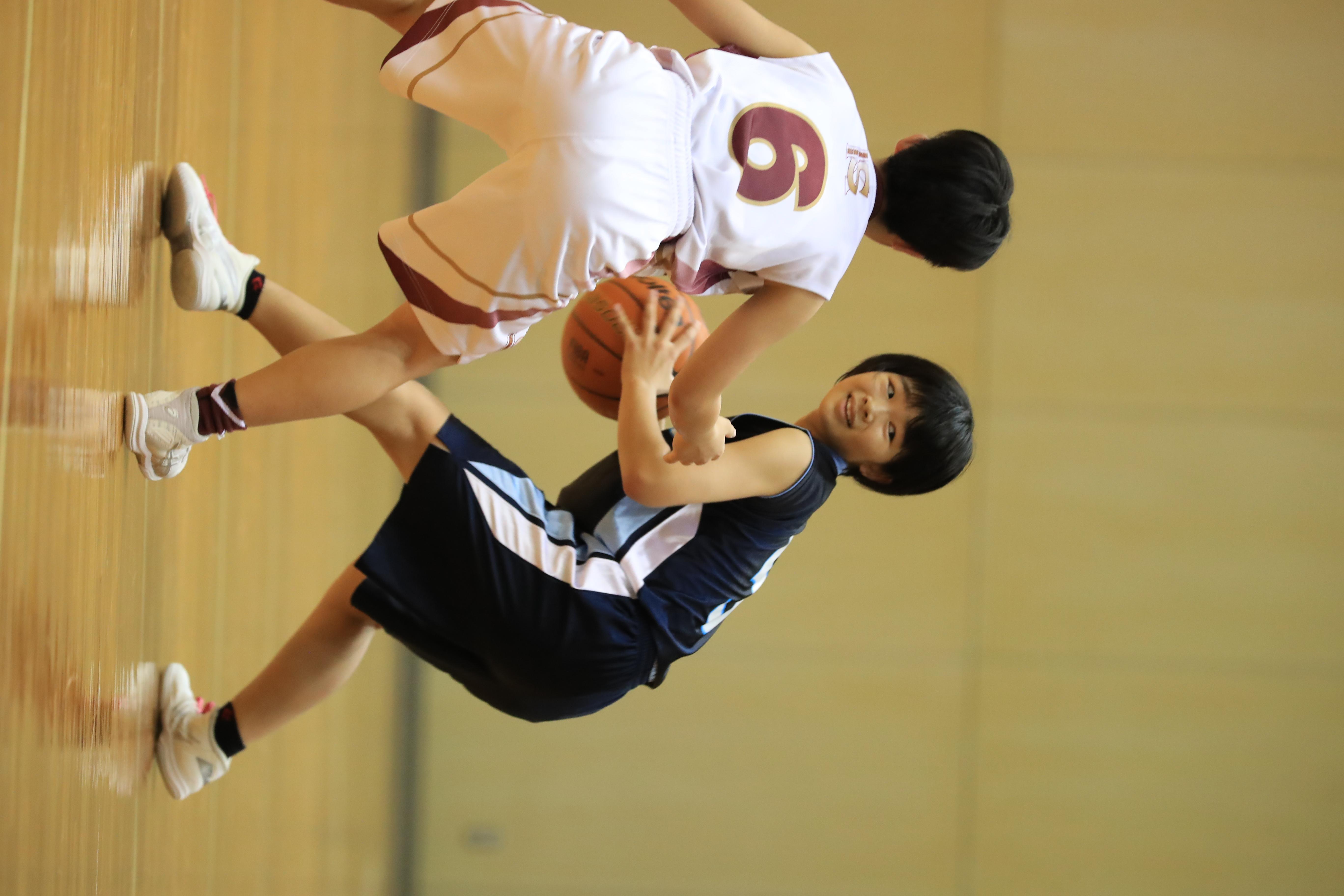 バスケット (109)