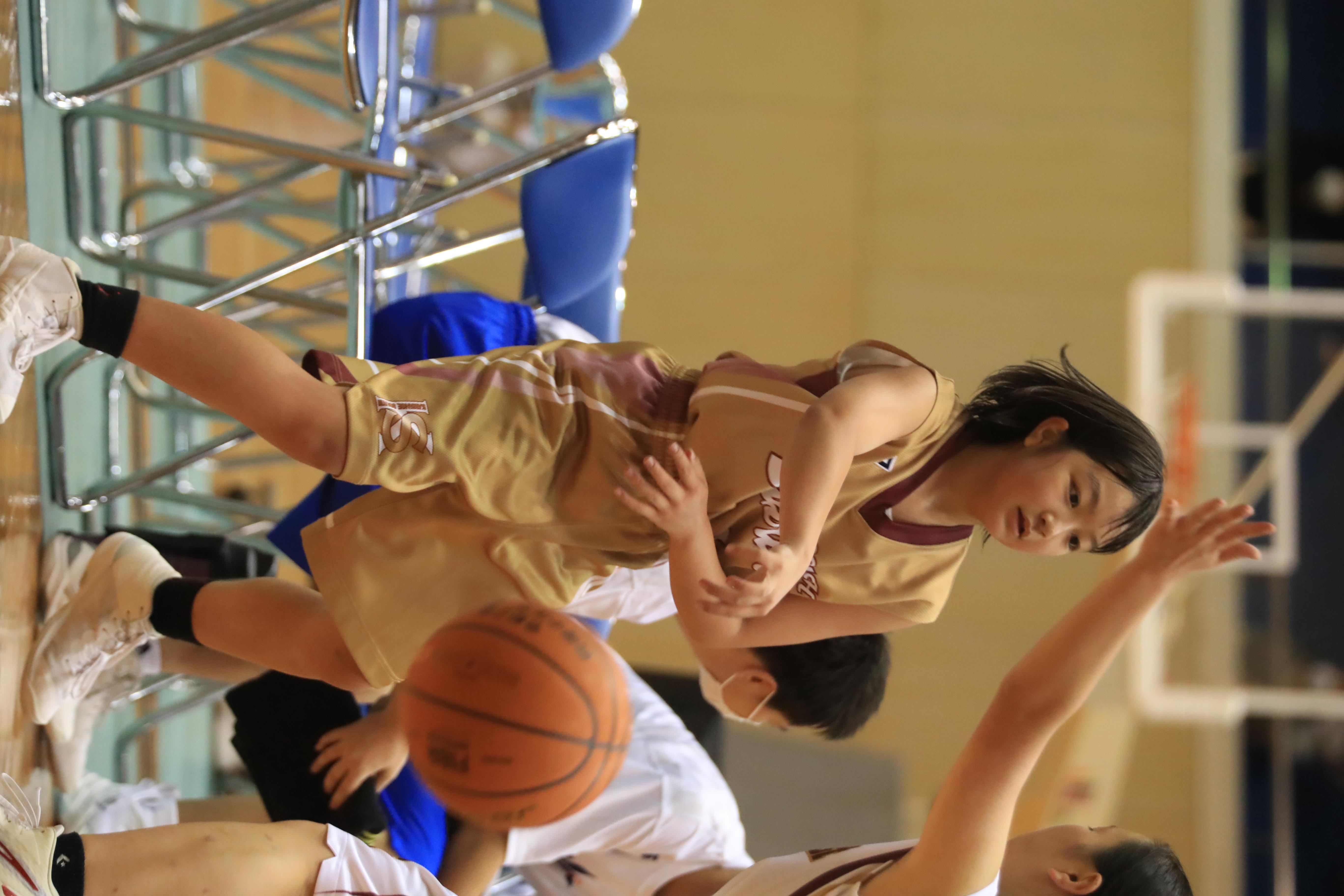 バスケット (433)