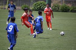 サッカー (729)