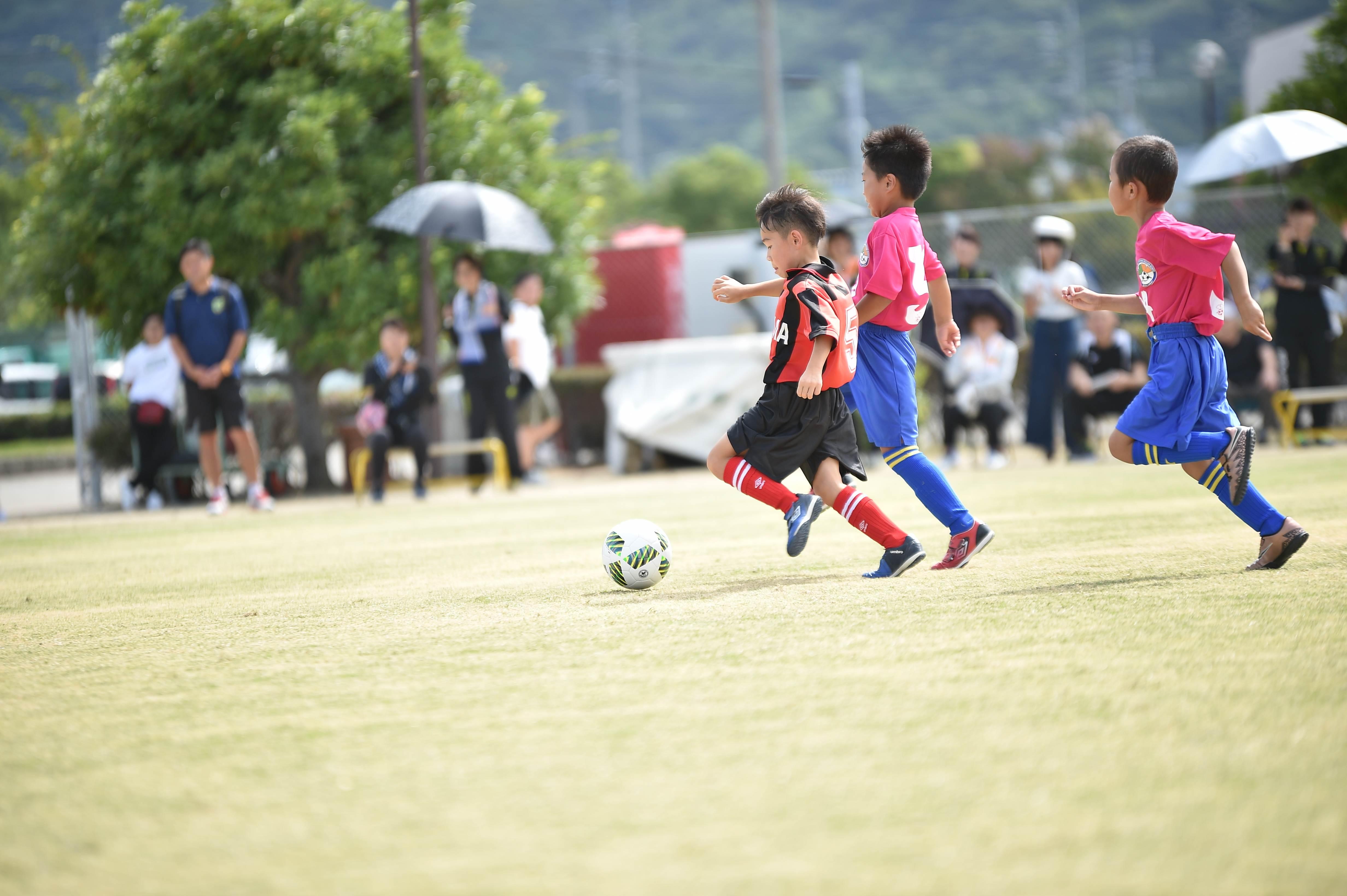 mini_soccer (205)