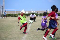 mini_soccer (109)
