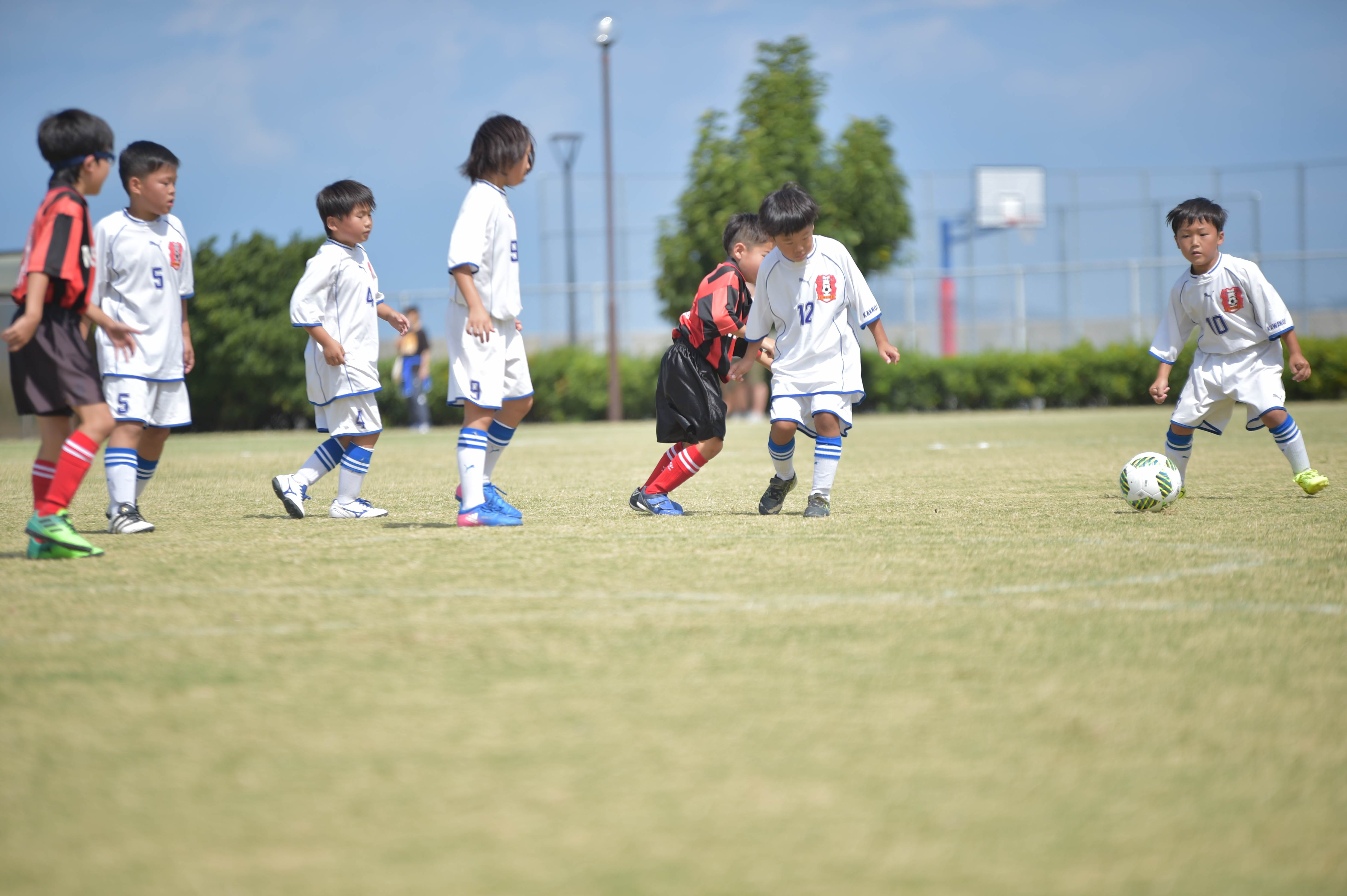 mini_soccer (325)