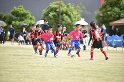 mini_soccer (214)