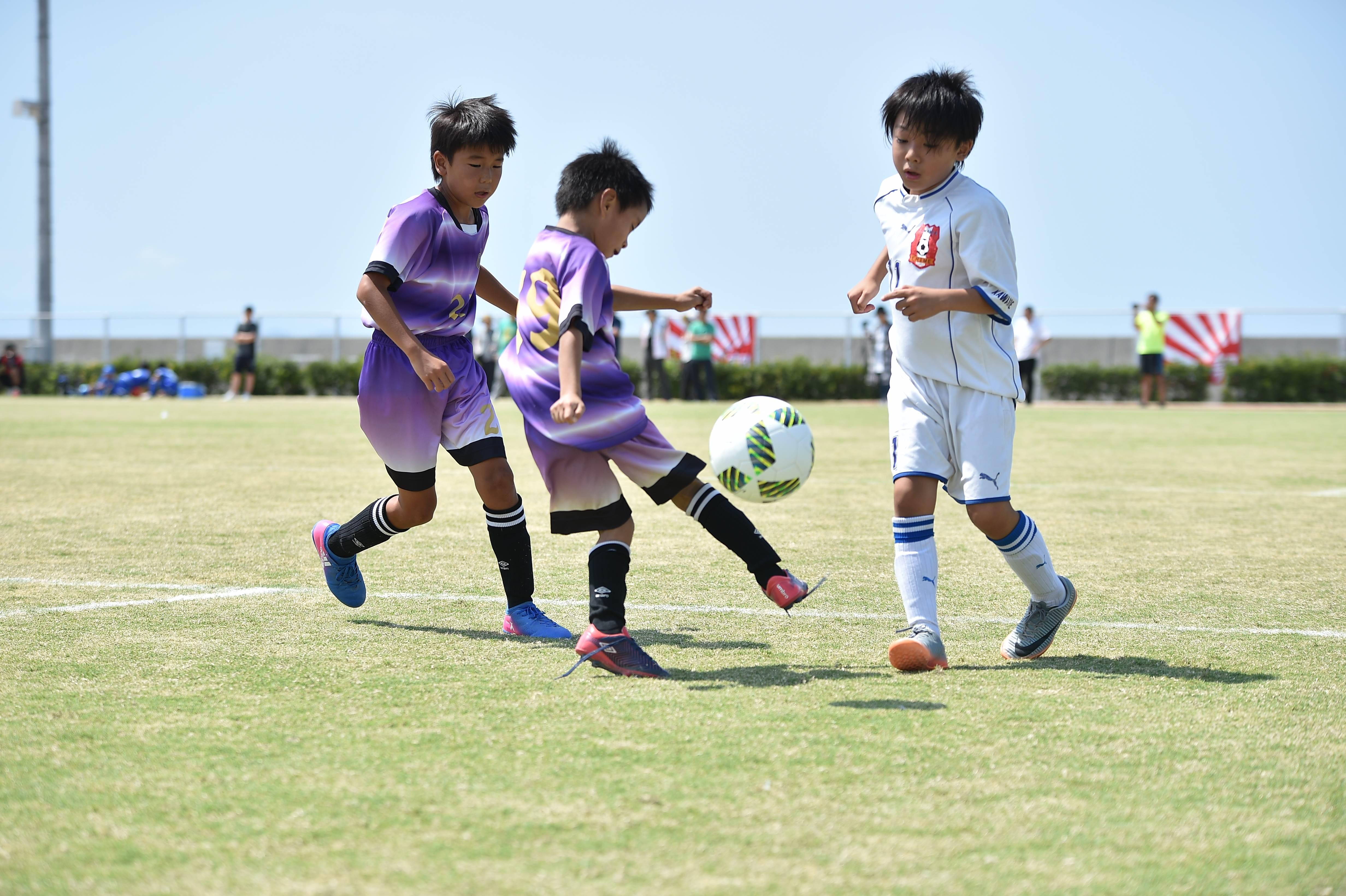 mini_soccer (497)