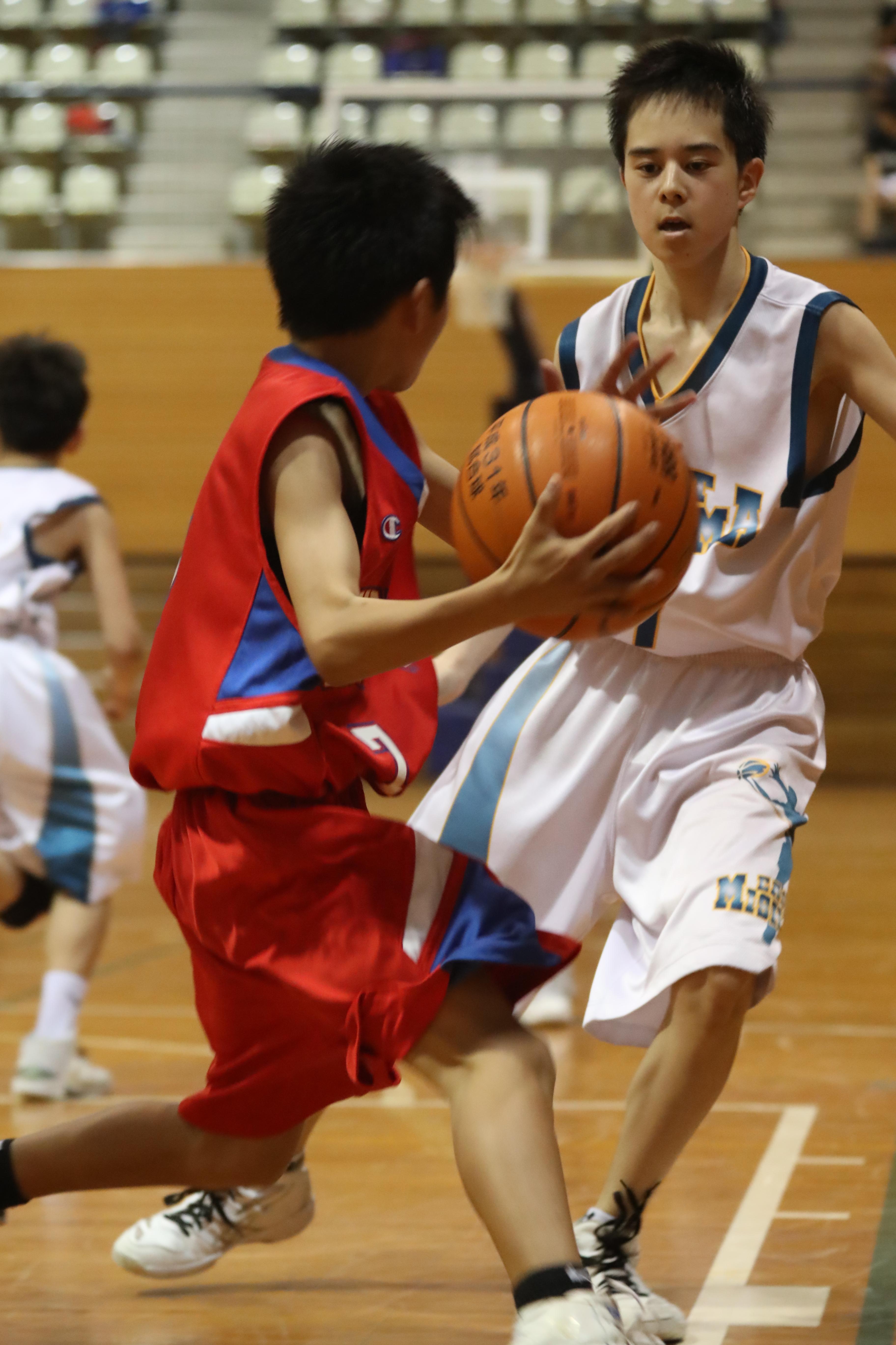 バスケット (51)