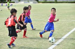 mini_soccer (156)