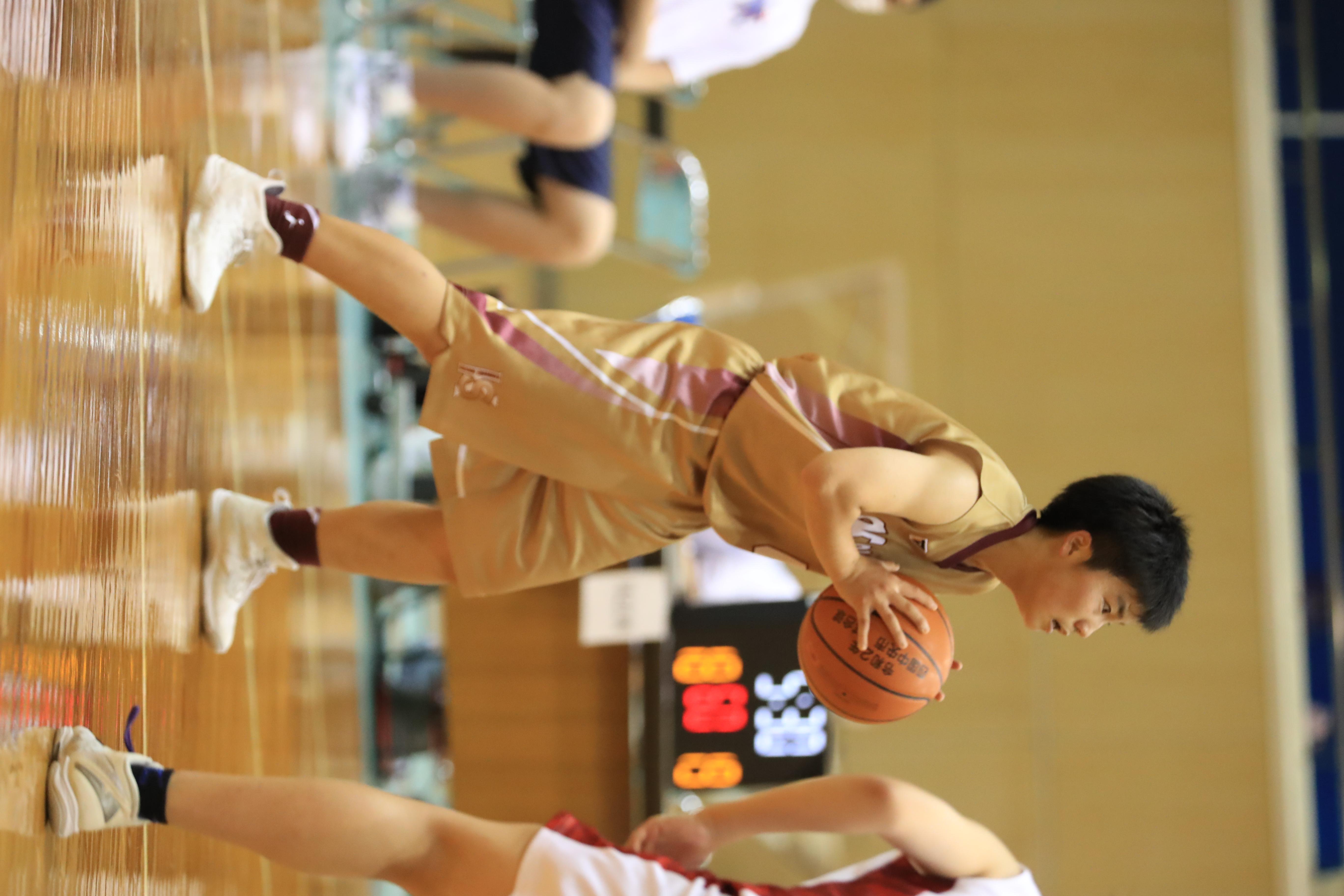 バスケット (589)