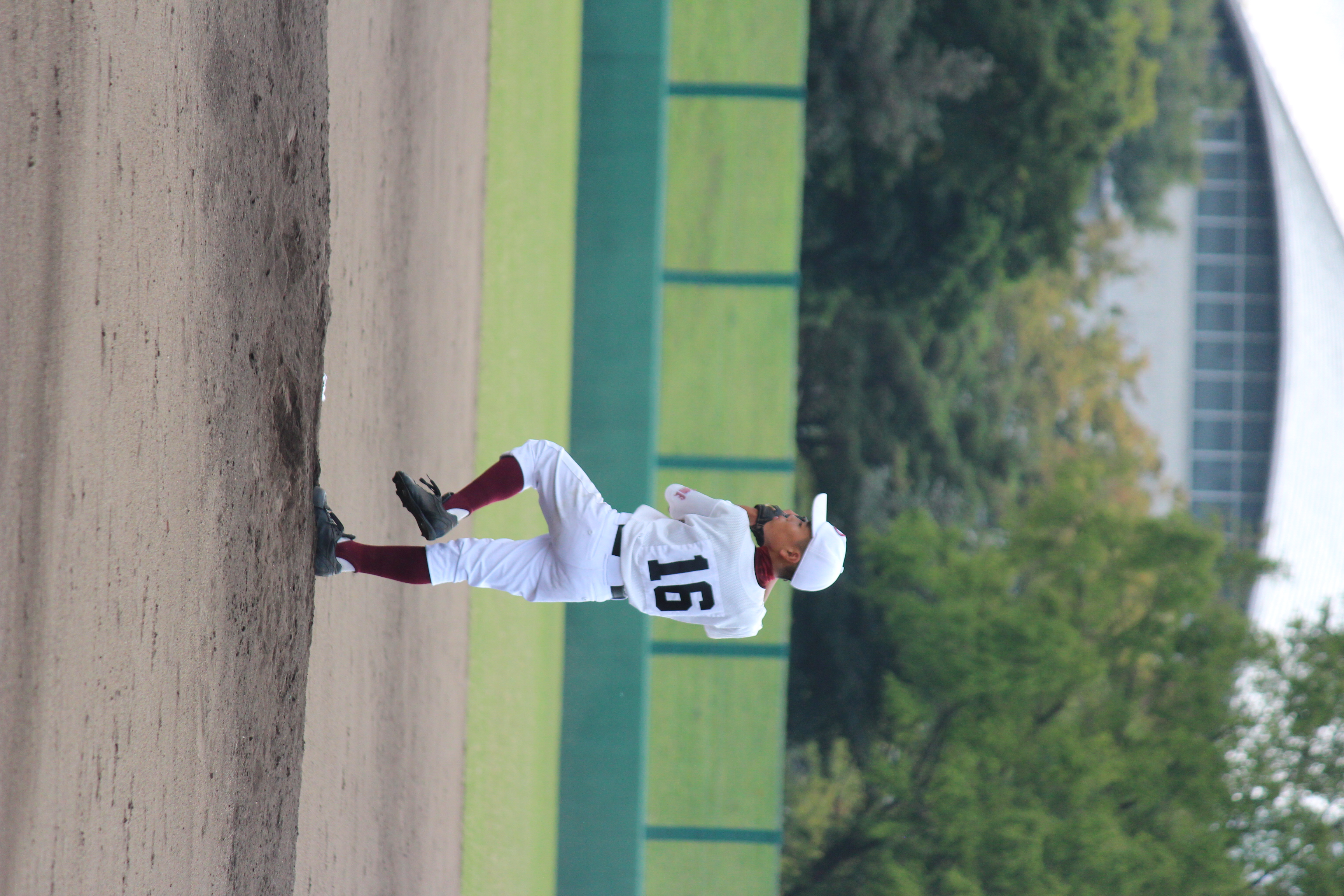 野球 (880)