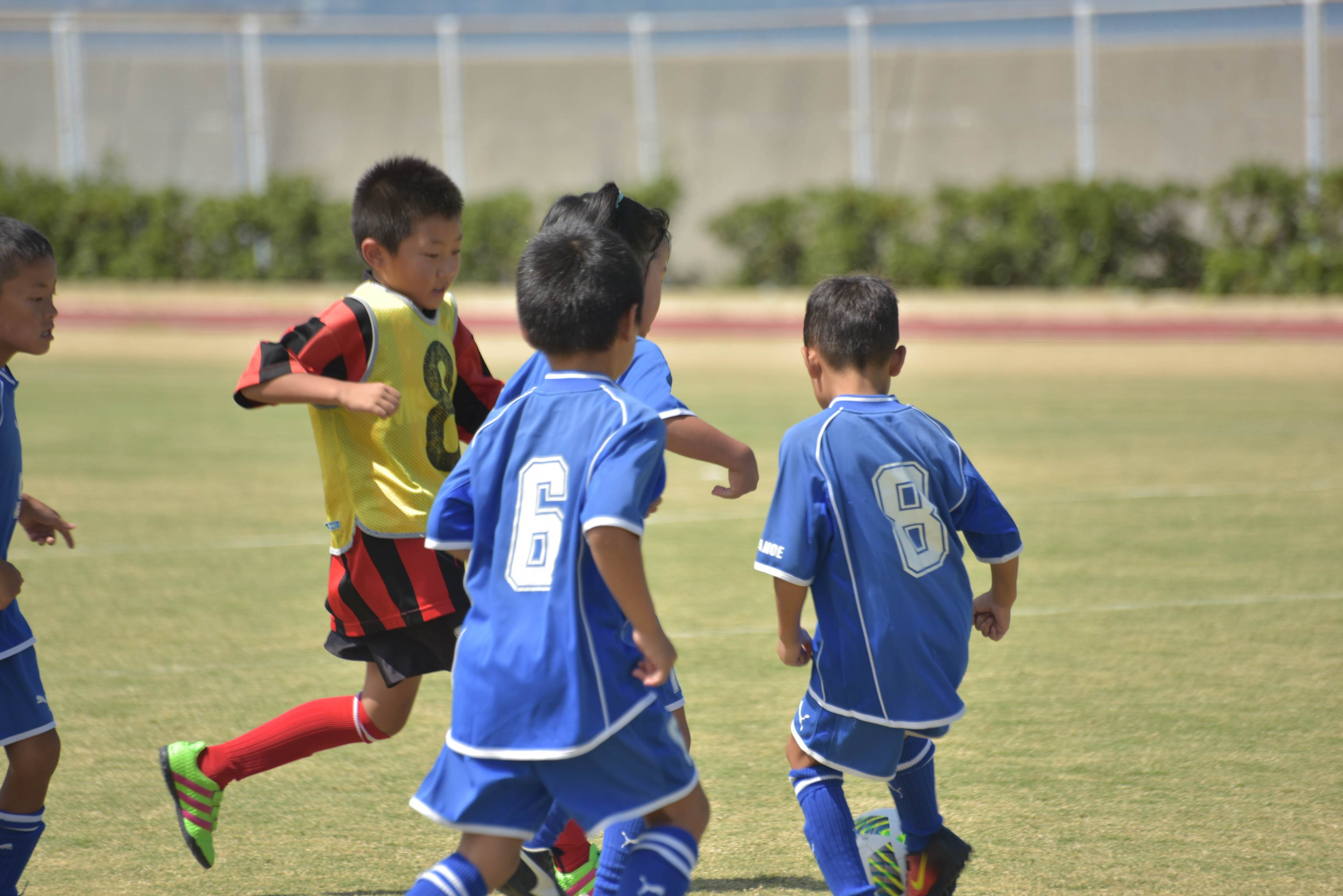 mini_soccer (628)