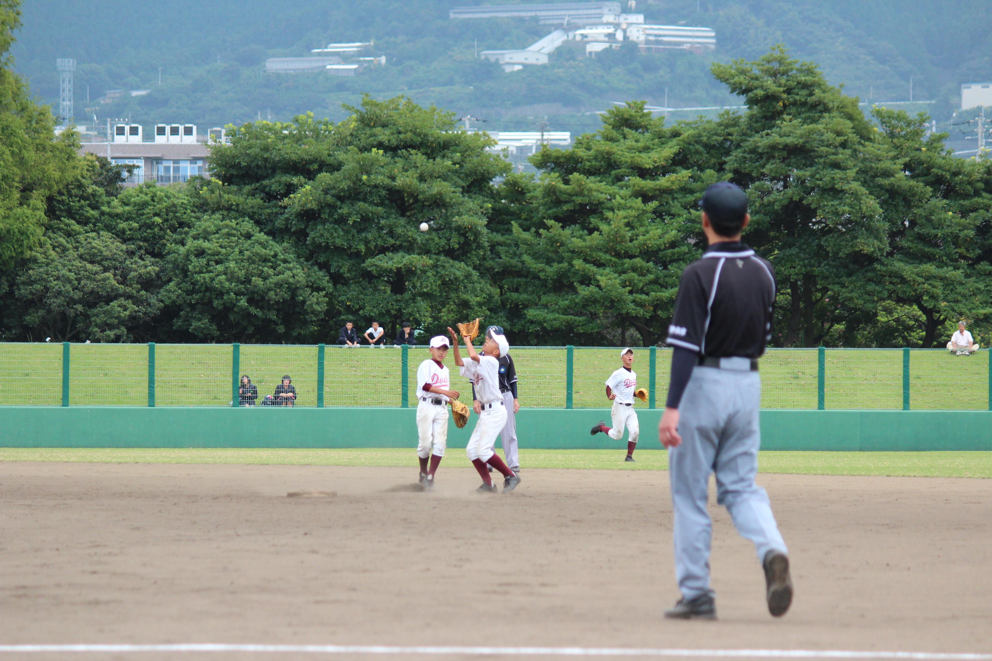 野球 (313)