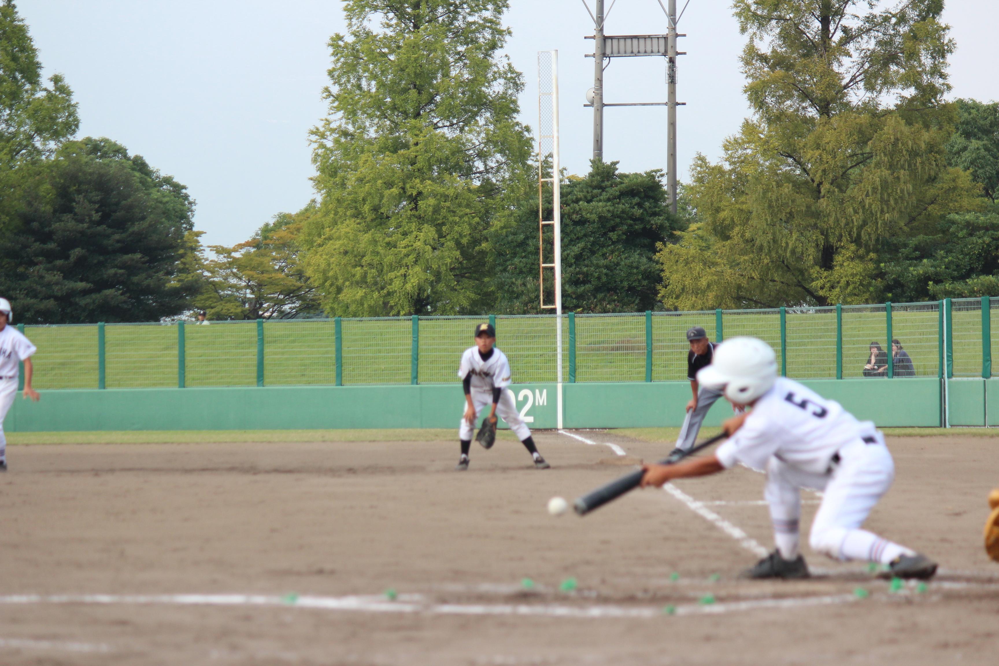 野球 (382)