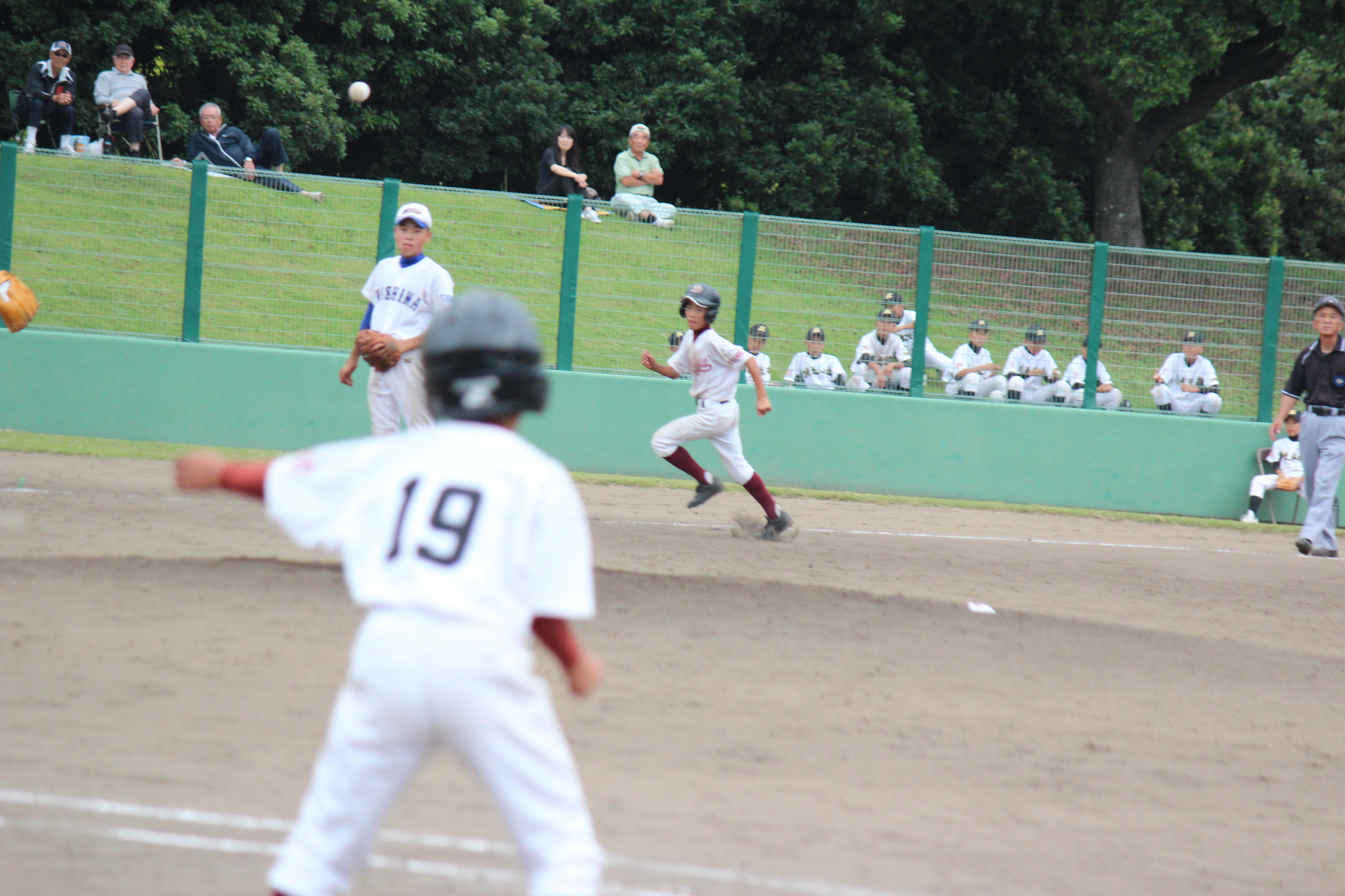 野球 (296)