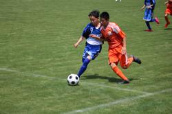 サッカー (229)