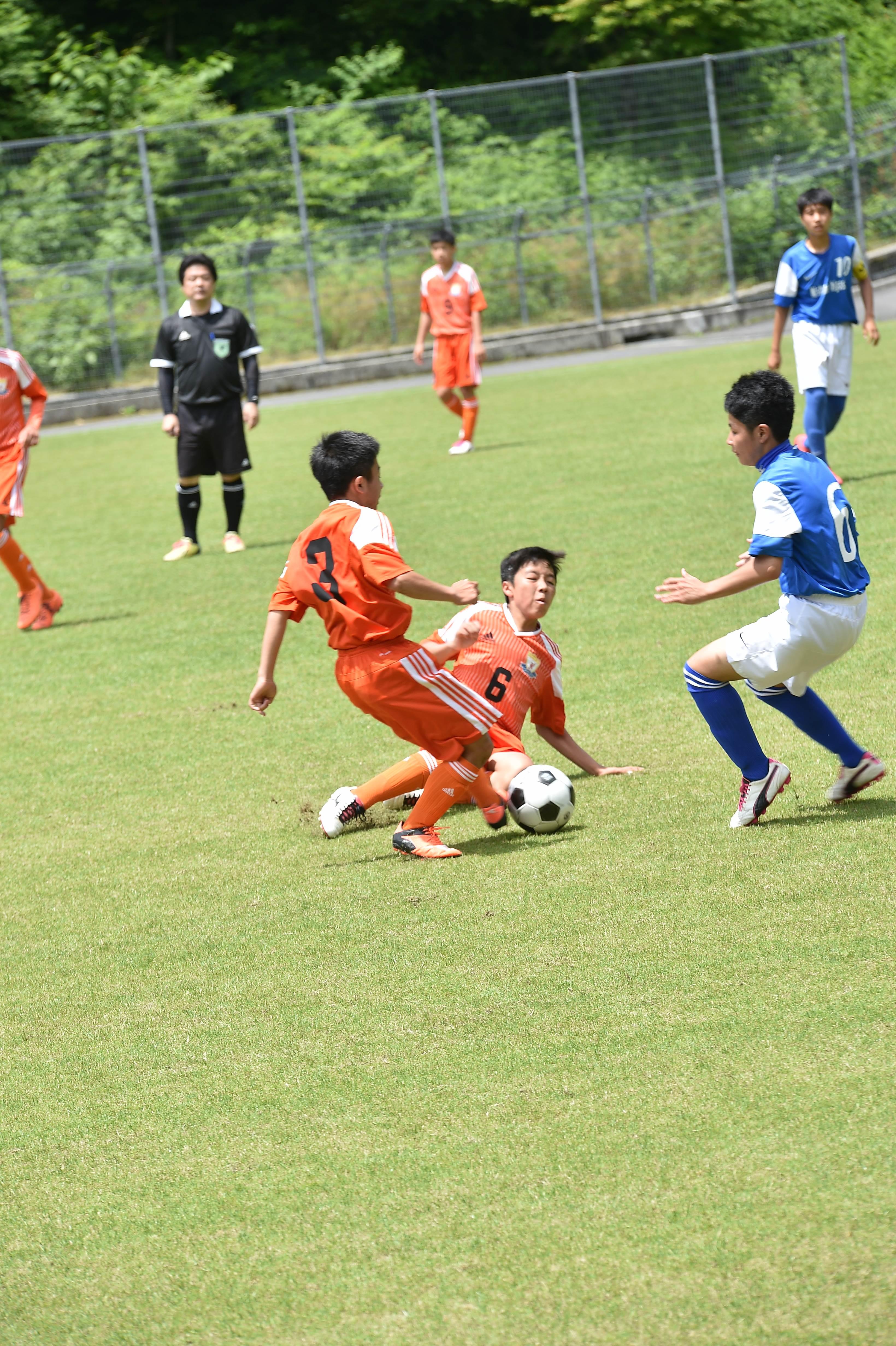 サッカー (253)