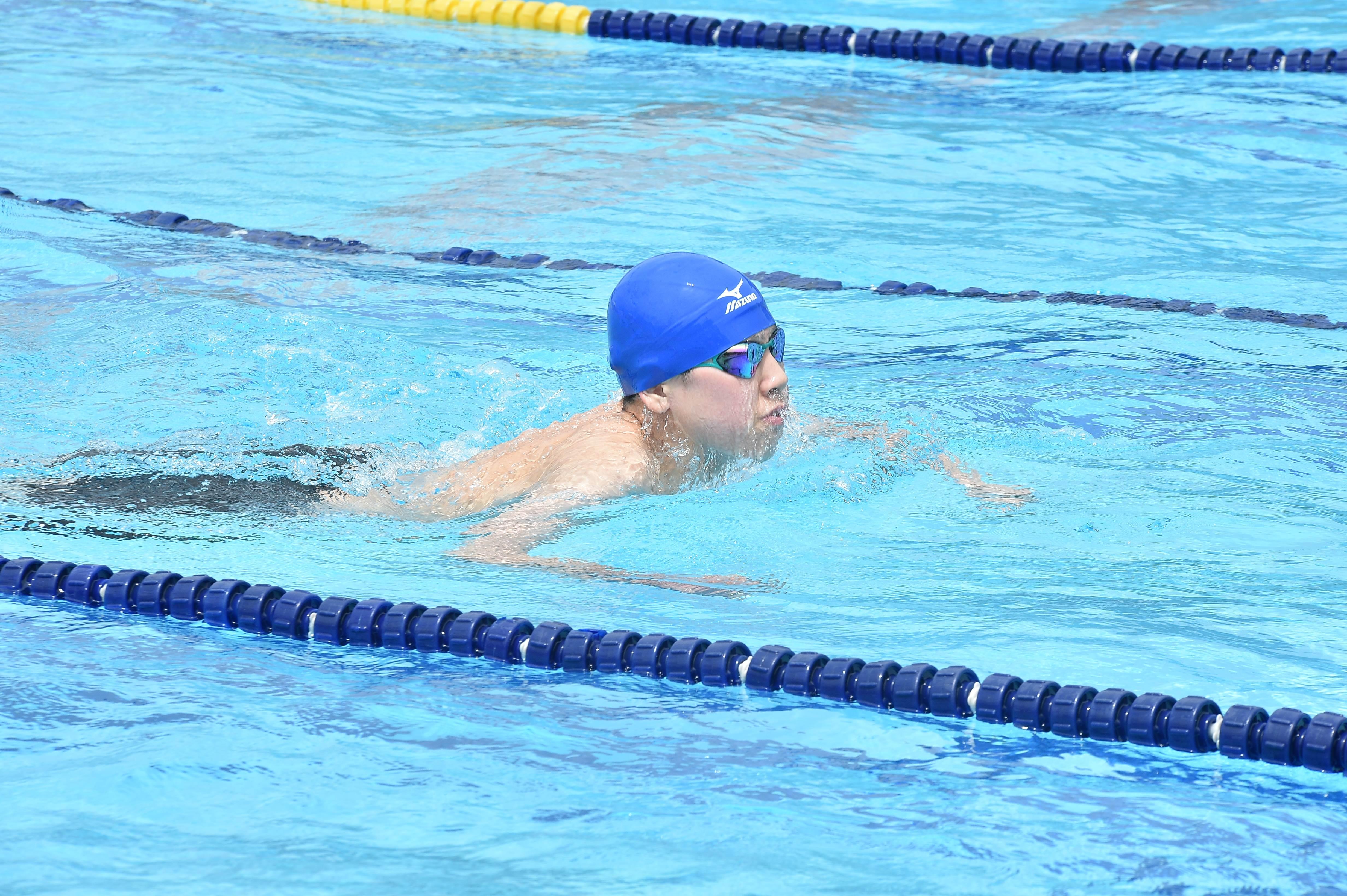 水泳 (71)