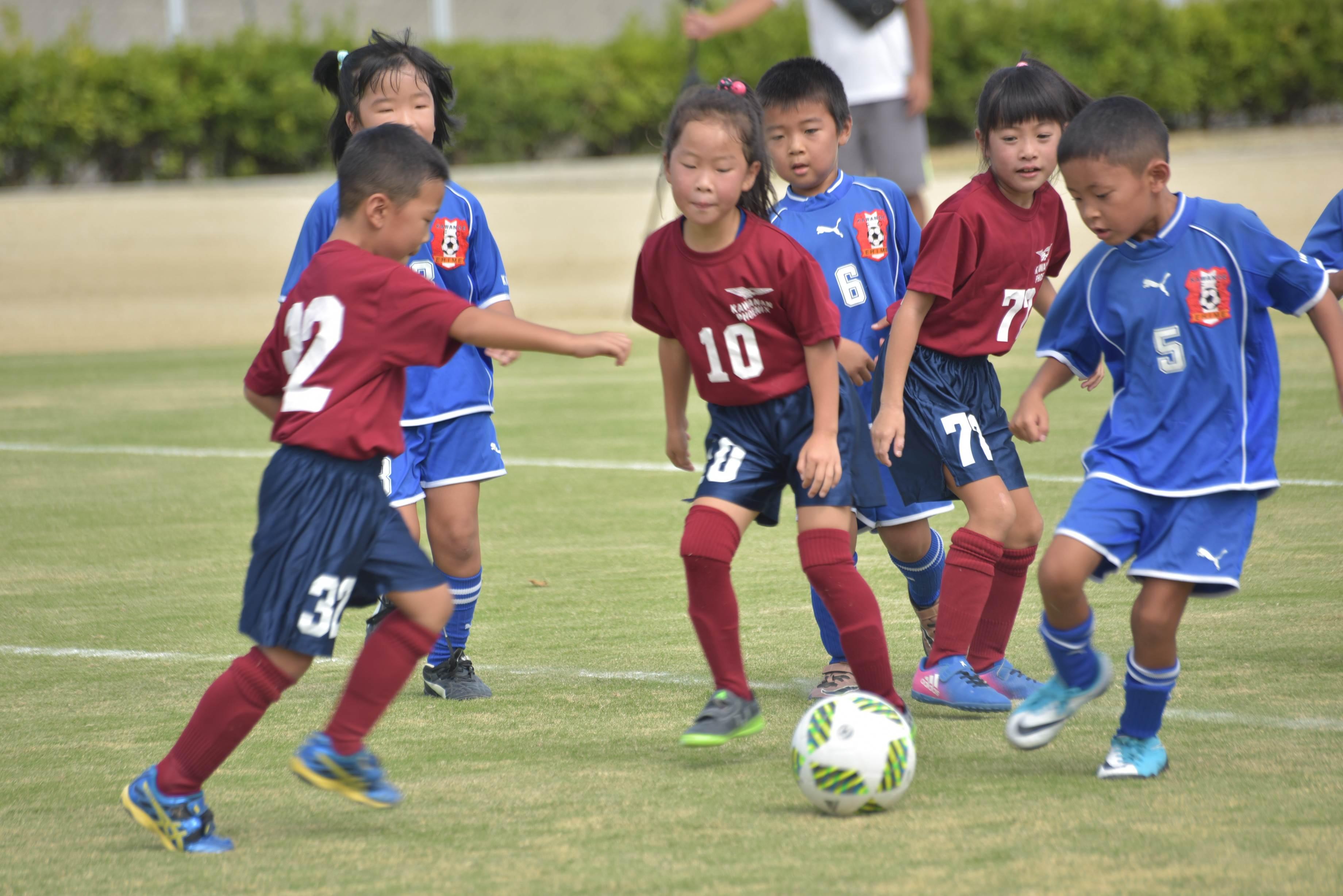 mini_soccer (572)