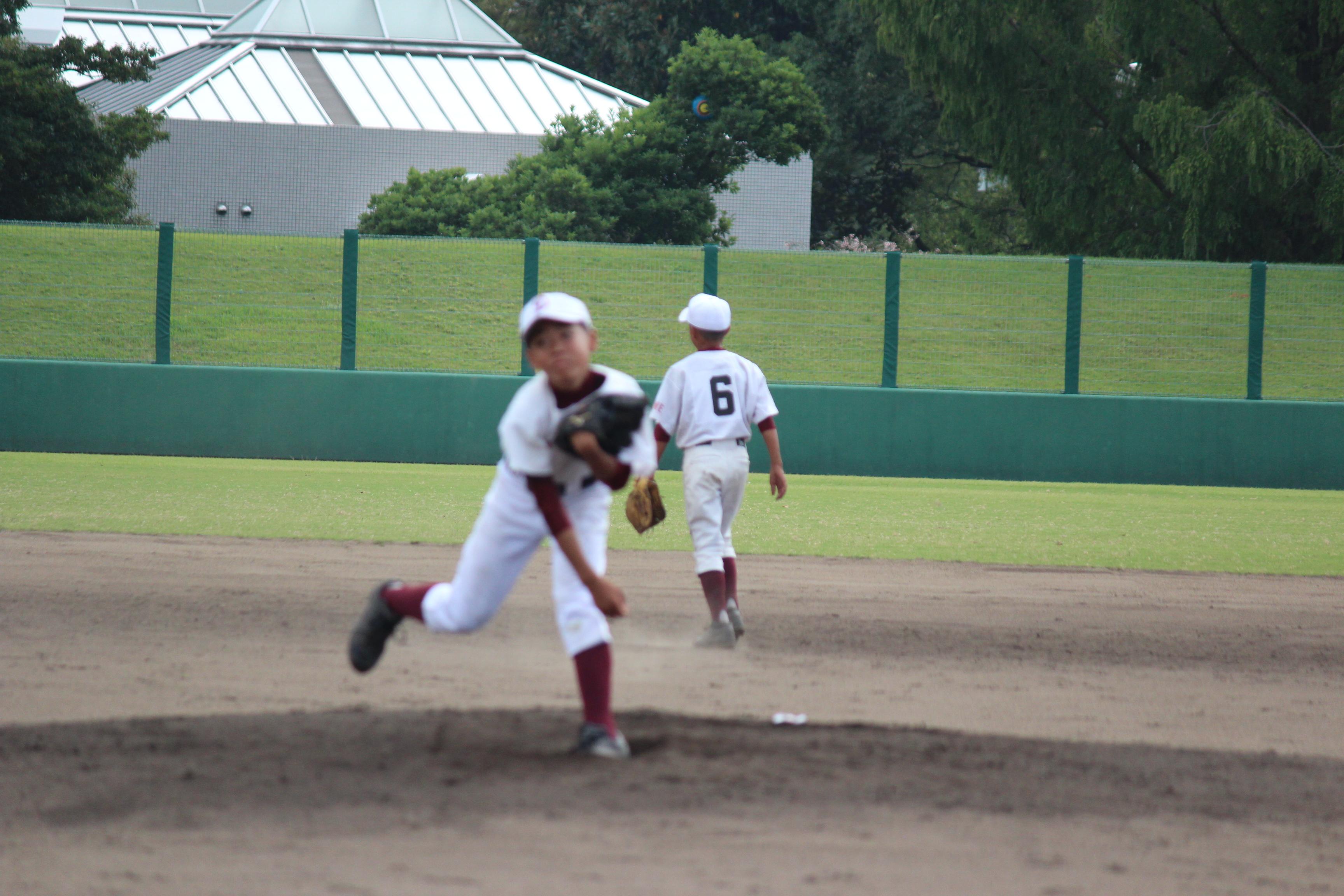 野球 (878)