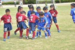 mini_soccer (565)