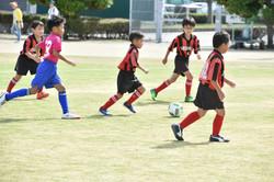 mini_soccer (138)