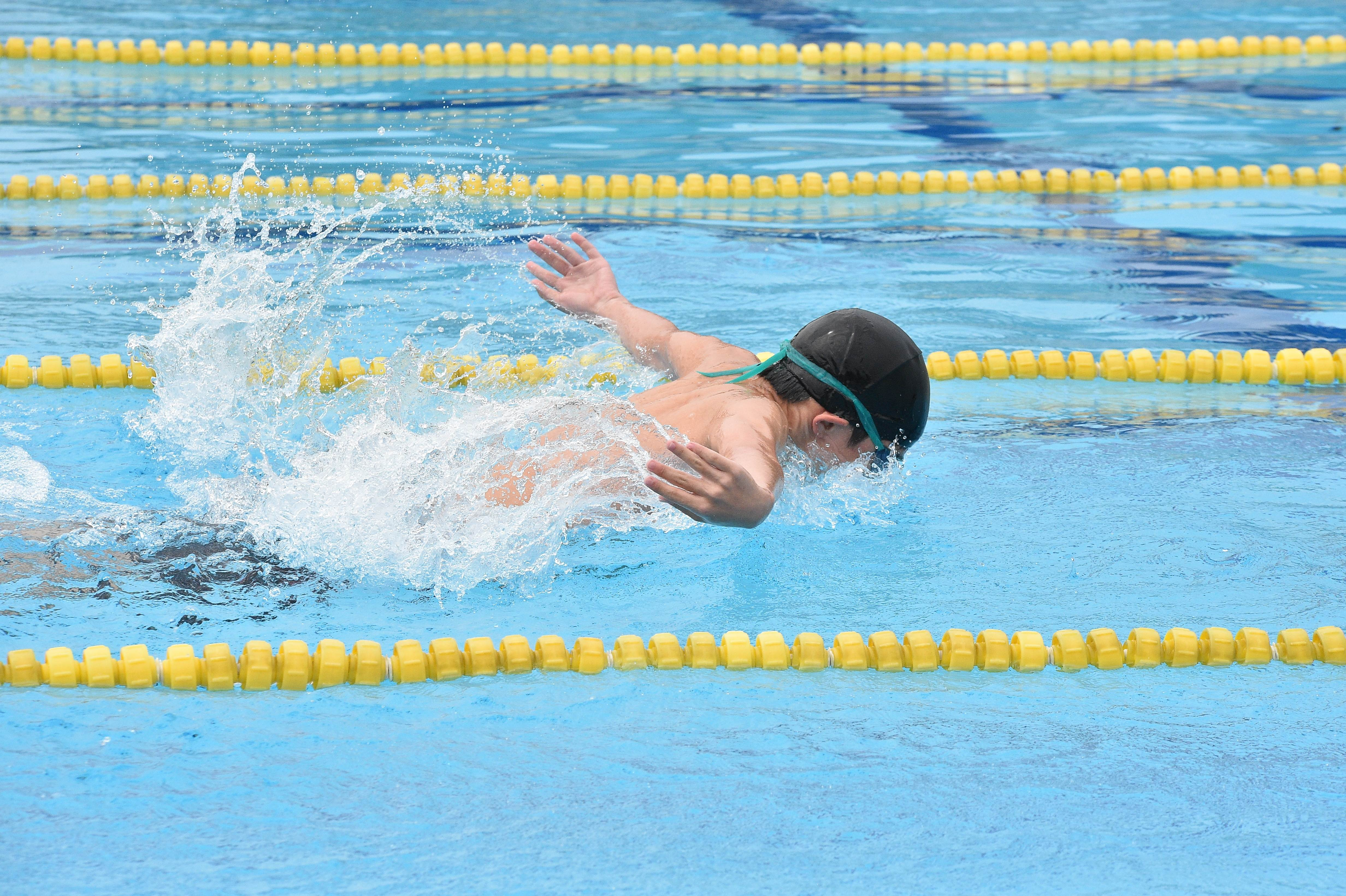 水泳 (141)