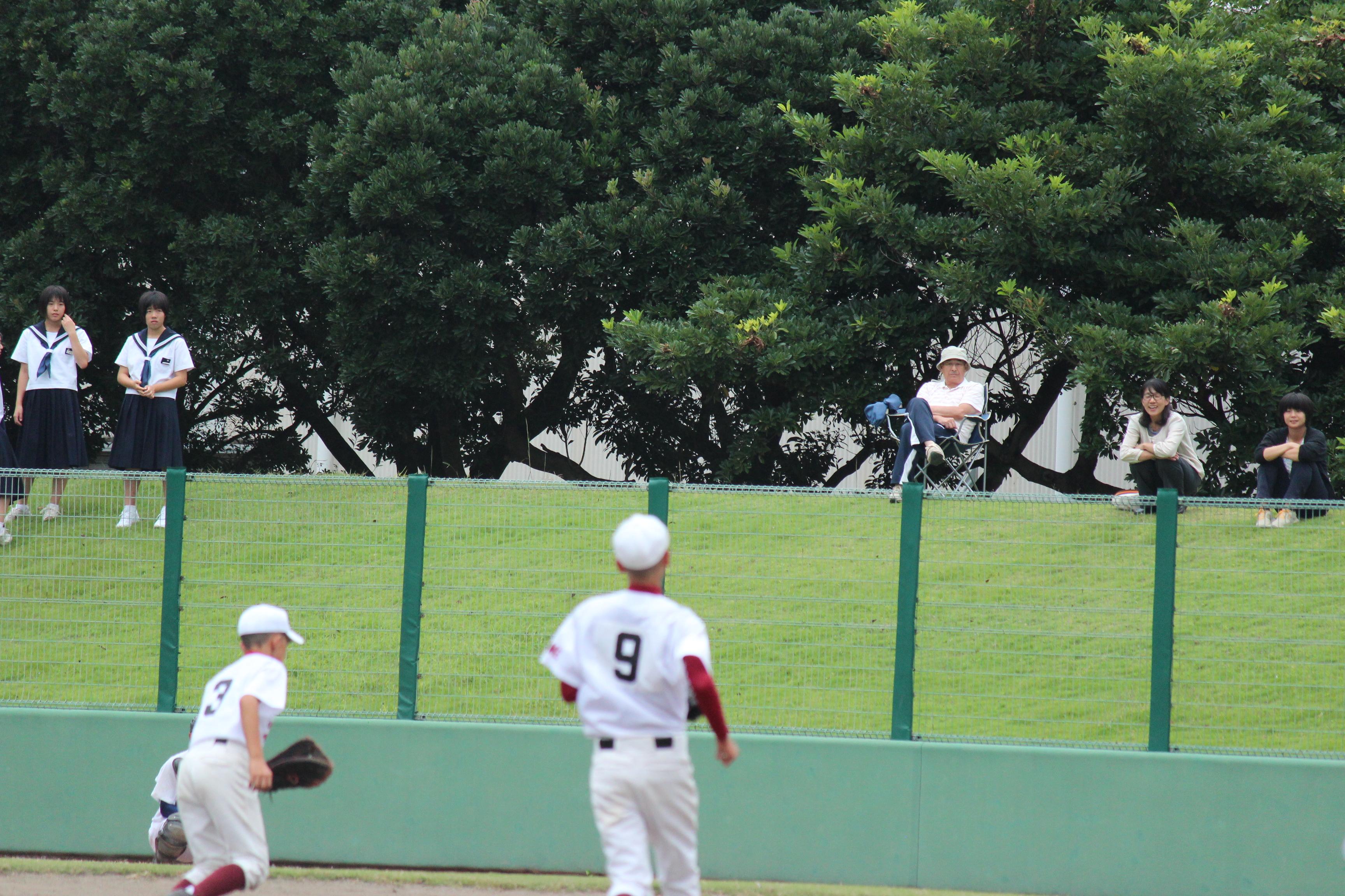 野球 (231)