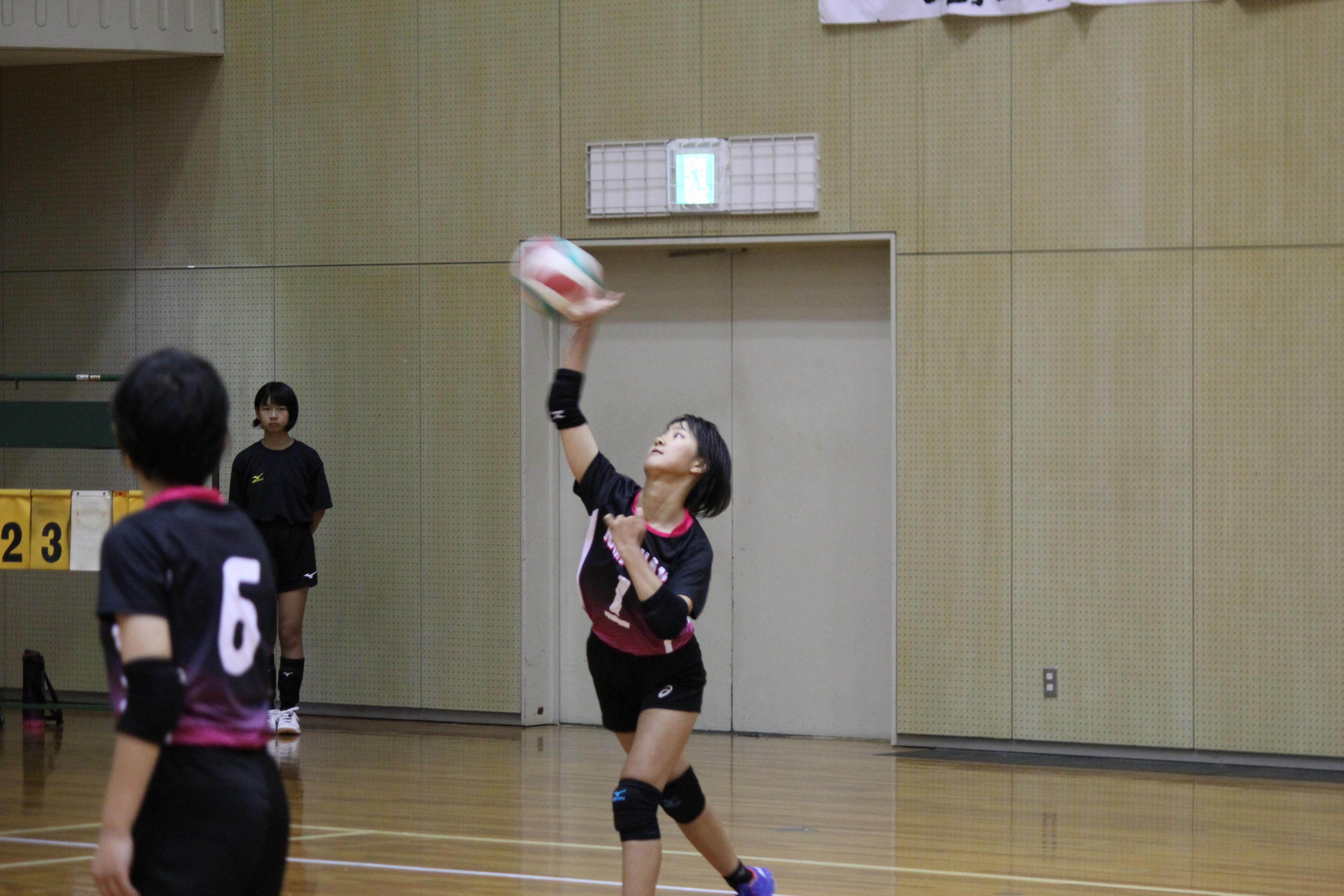 バレーボール (335)