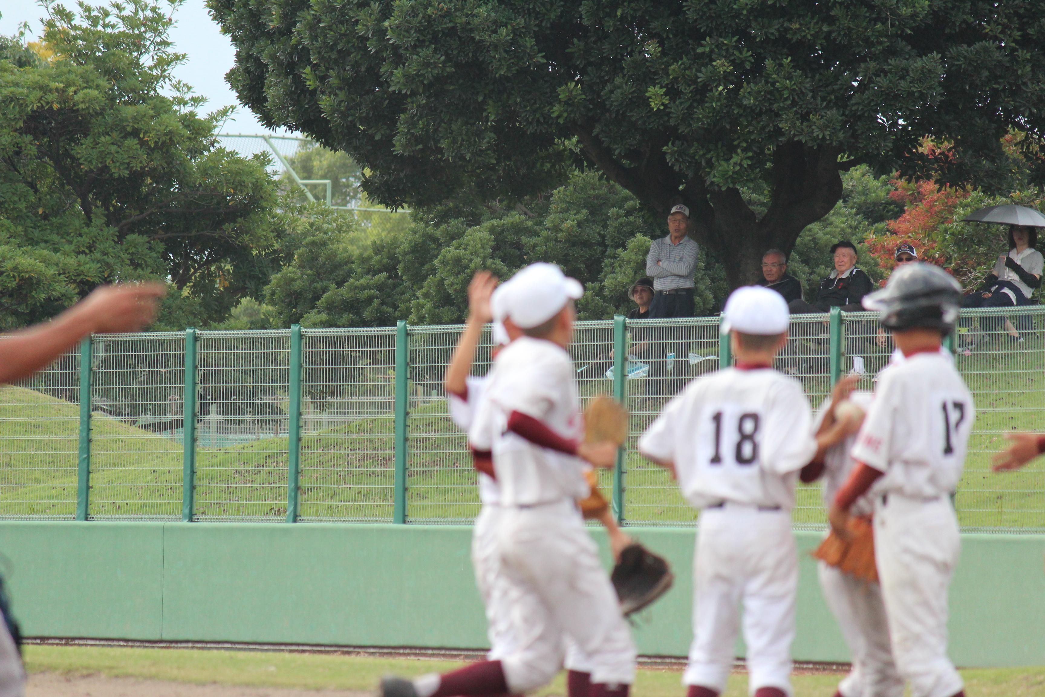 野球 (894)