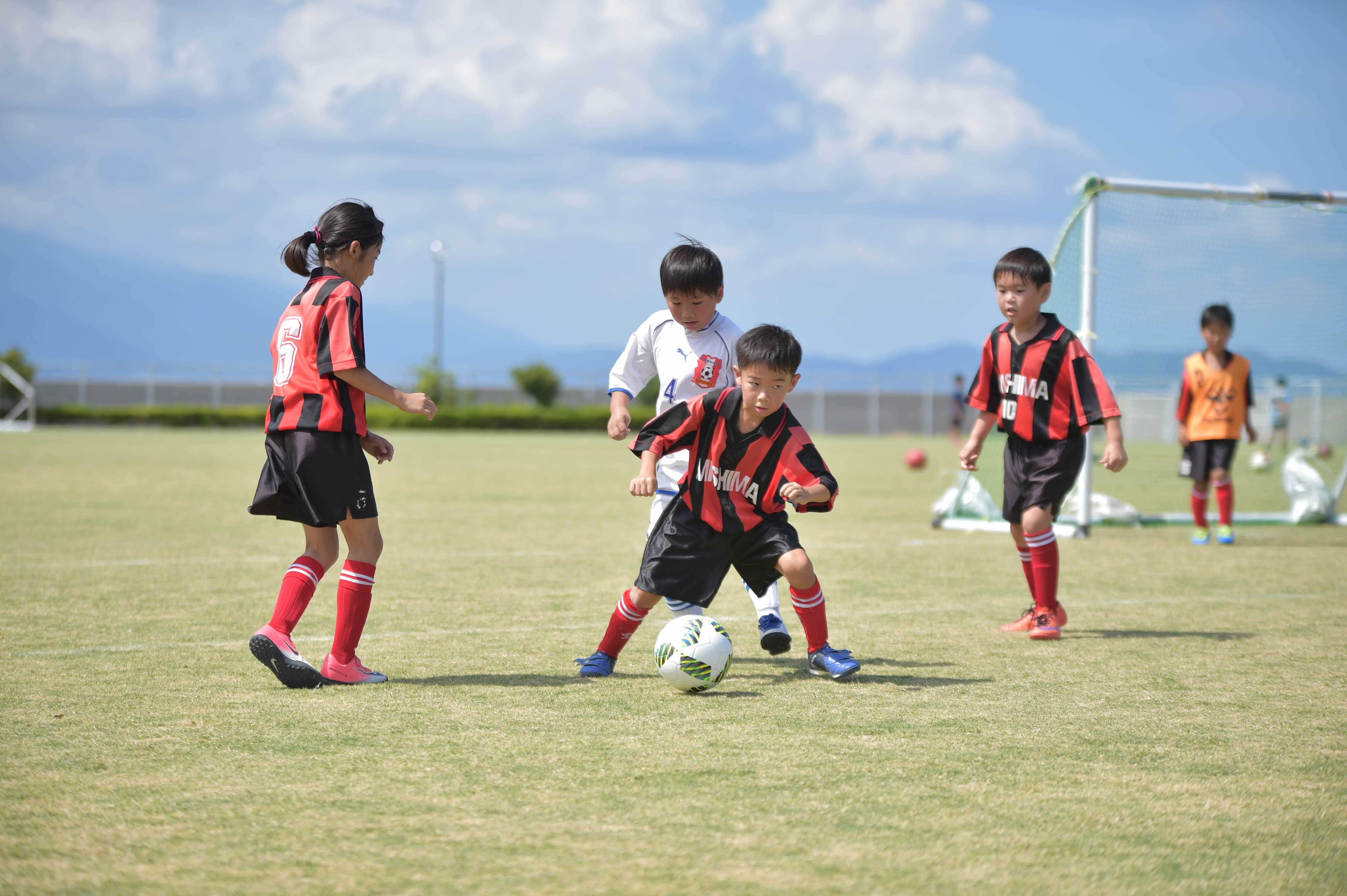 mini_soccer (359)