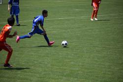 サッカー (347)