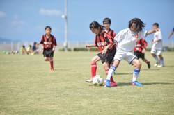mini_soccer (319)