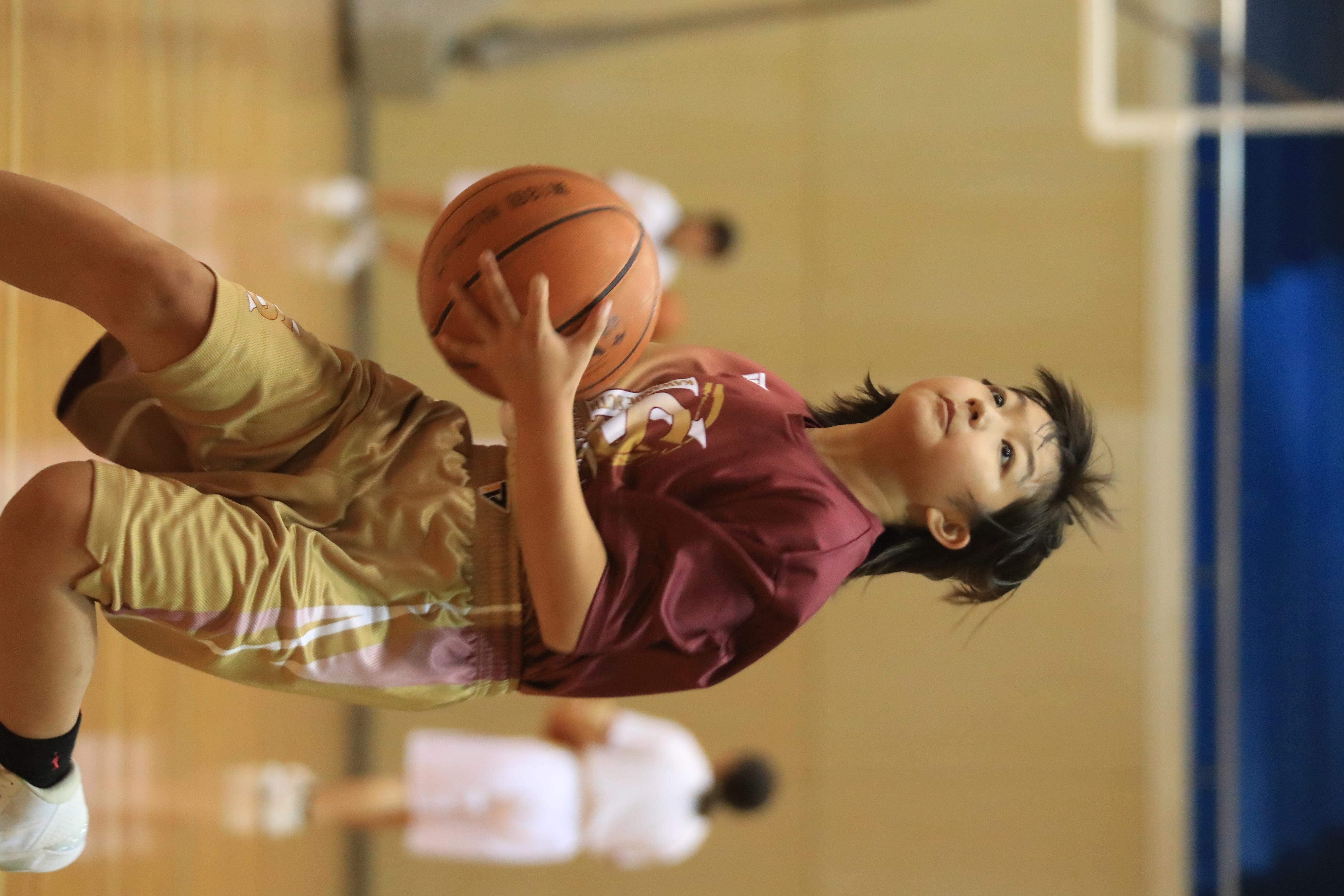 バスケット (328)