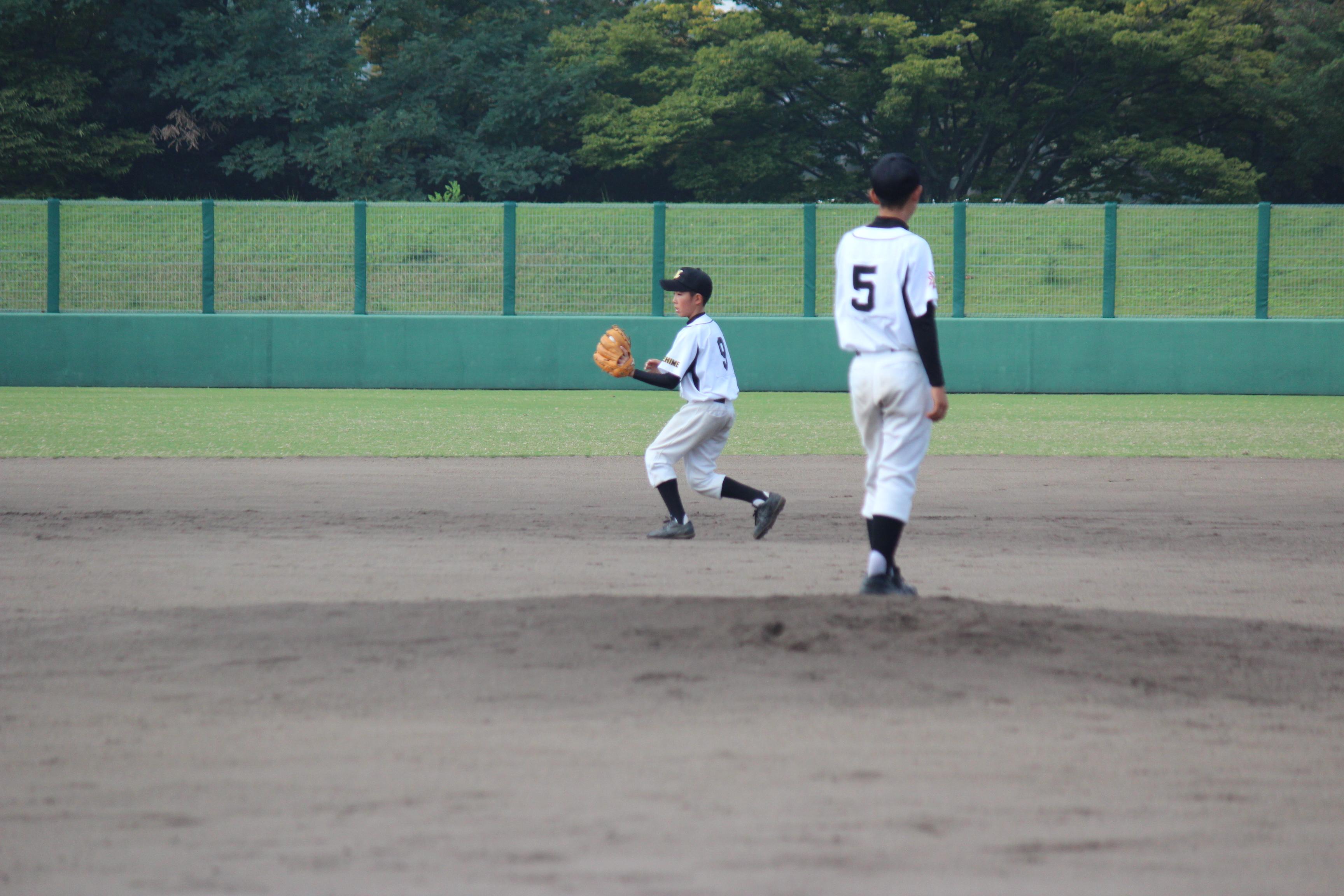 野球 (381)