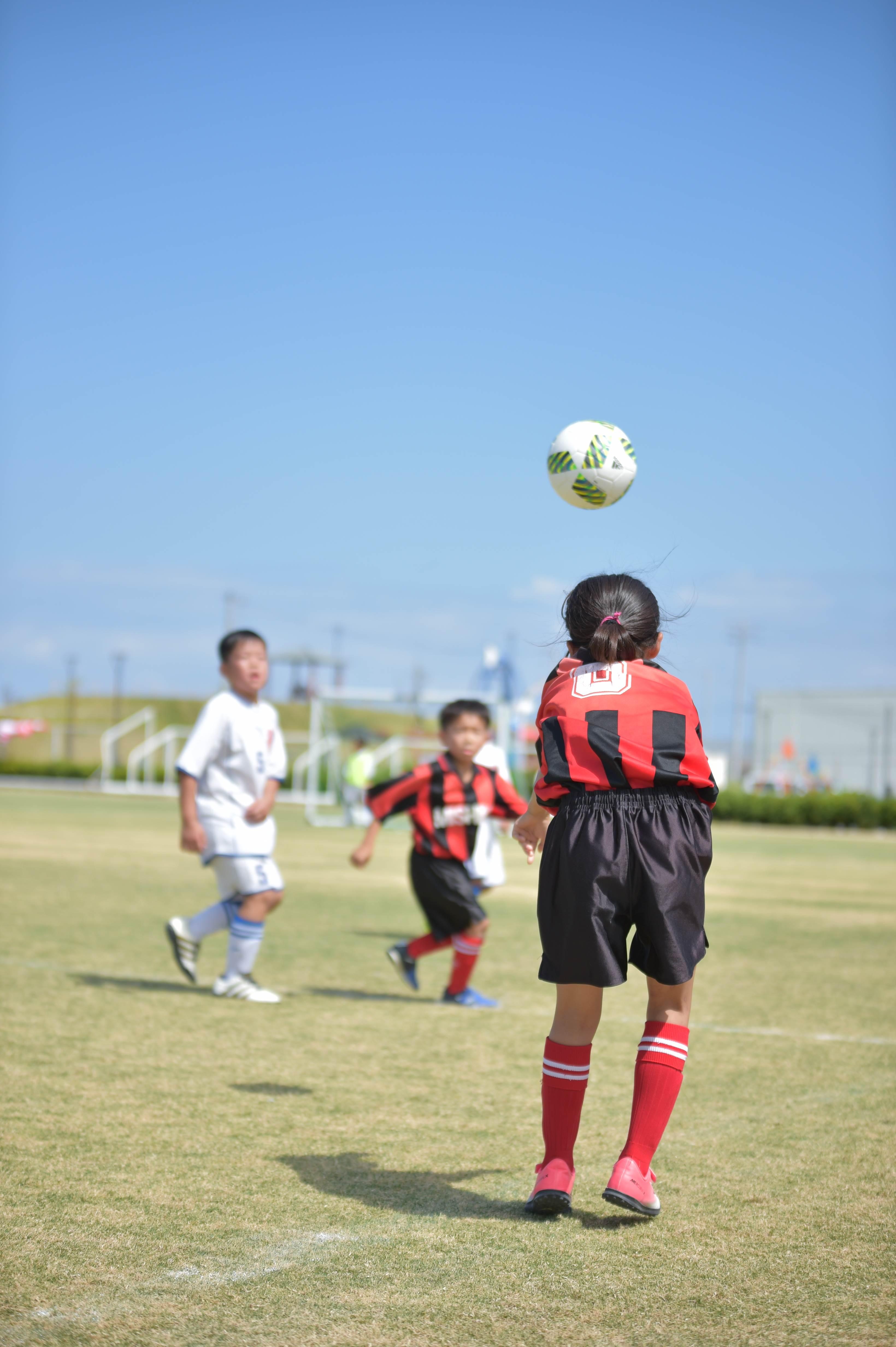 mini_soccer (347)