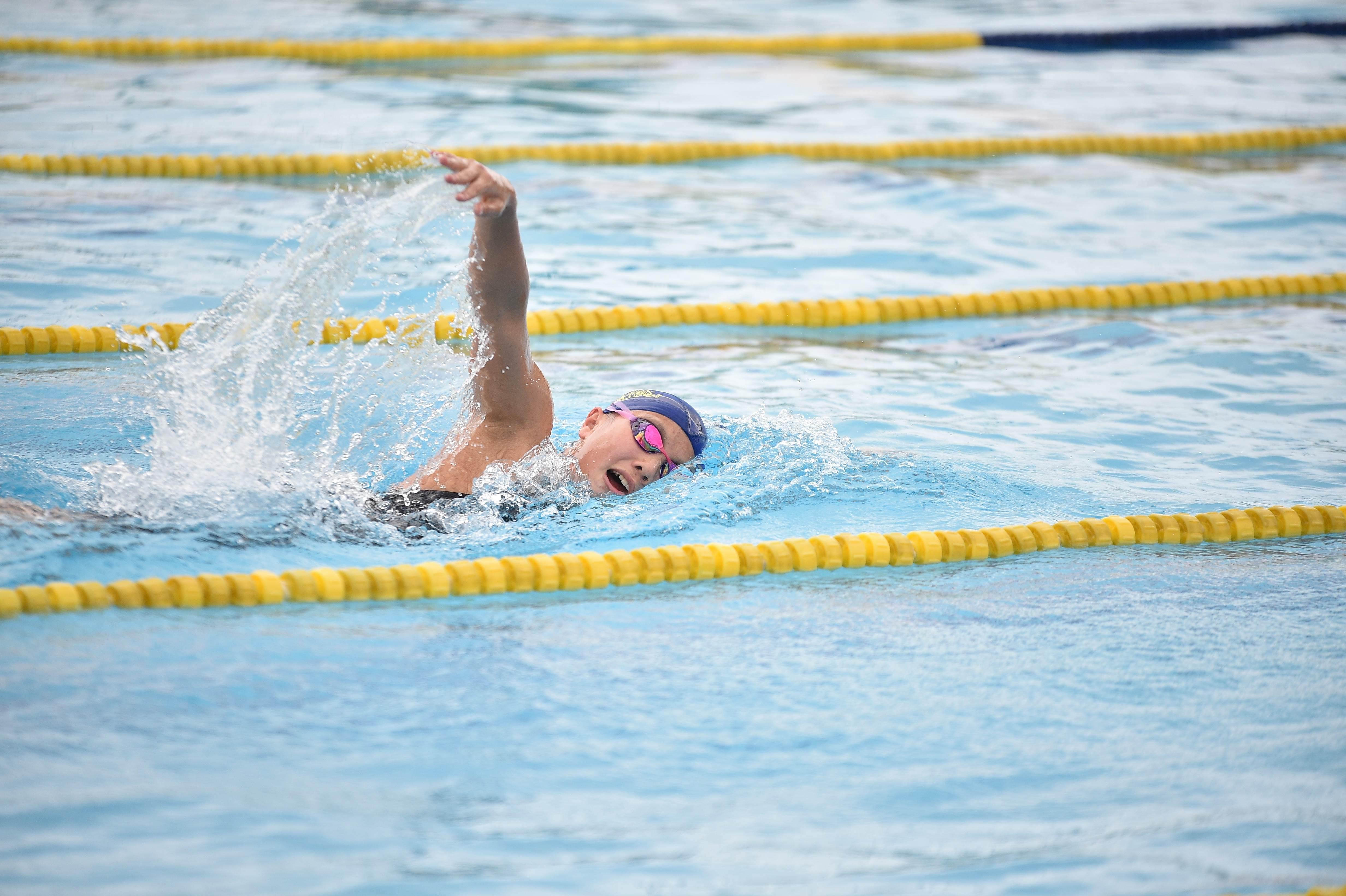 水泳 (97)
